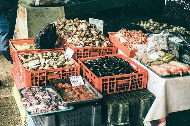 La pescadería de San Antonio, Chile. Canon A-1, Kodak Colorplus 200