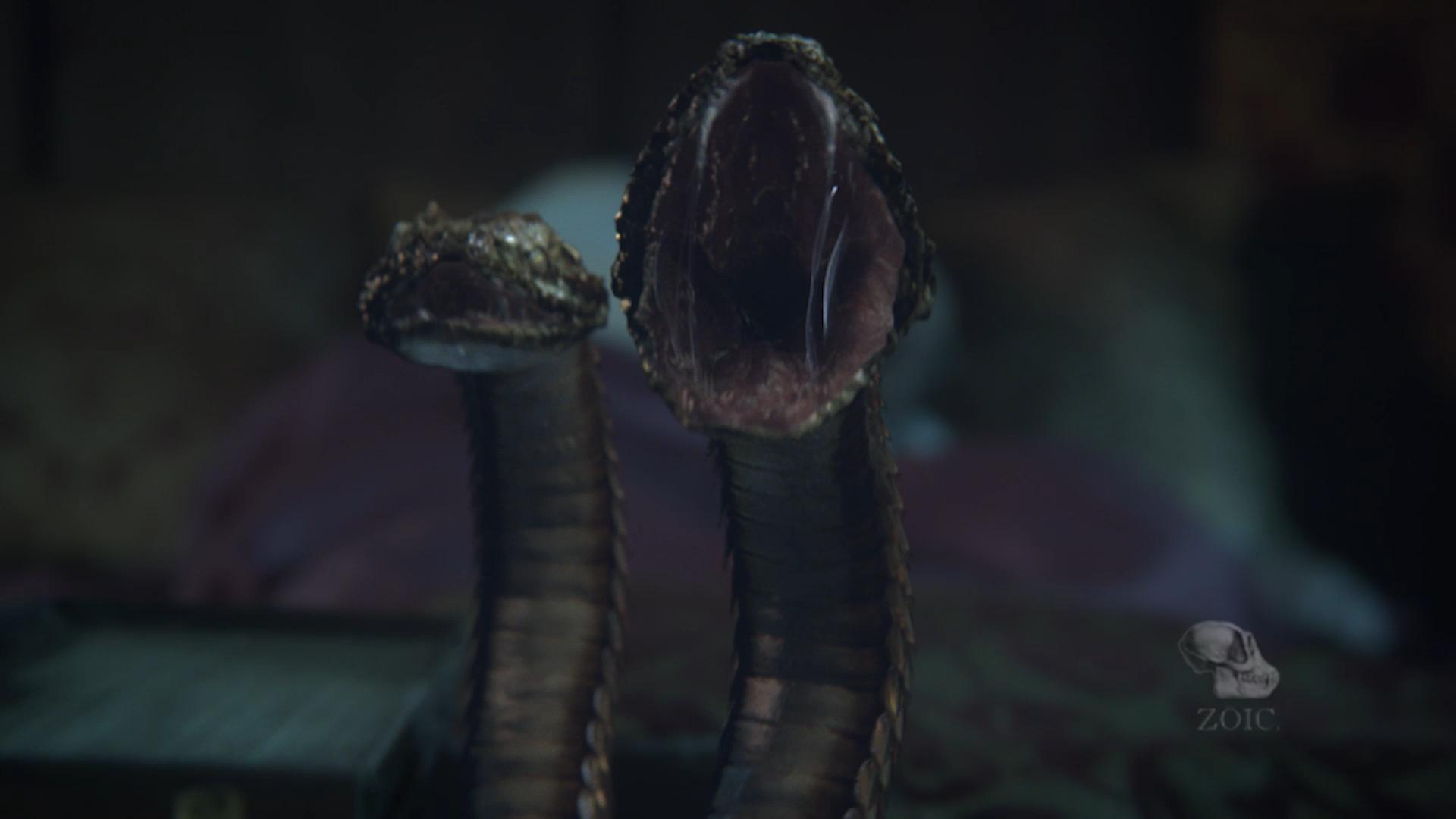 onc_snakes_v001.png