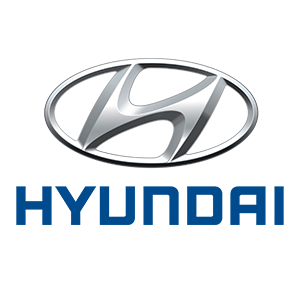 logo_0009_Hyundai-Loog.png