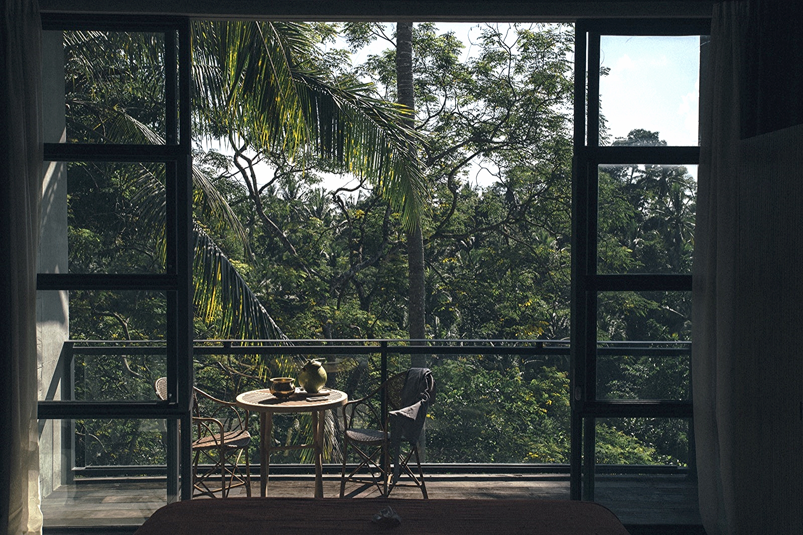 Forest Suite View