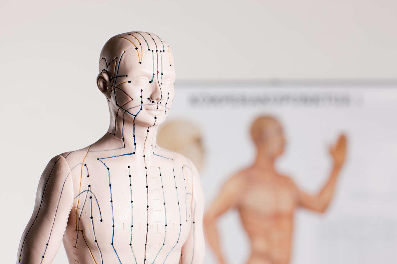 """Akupunktmassage  """"Krankheit ist... eine Störung des Energieflusses""""  Willy Penzel"""