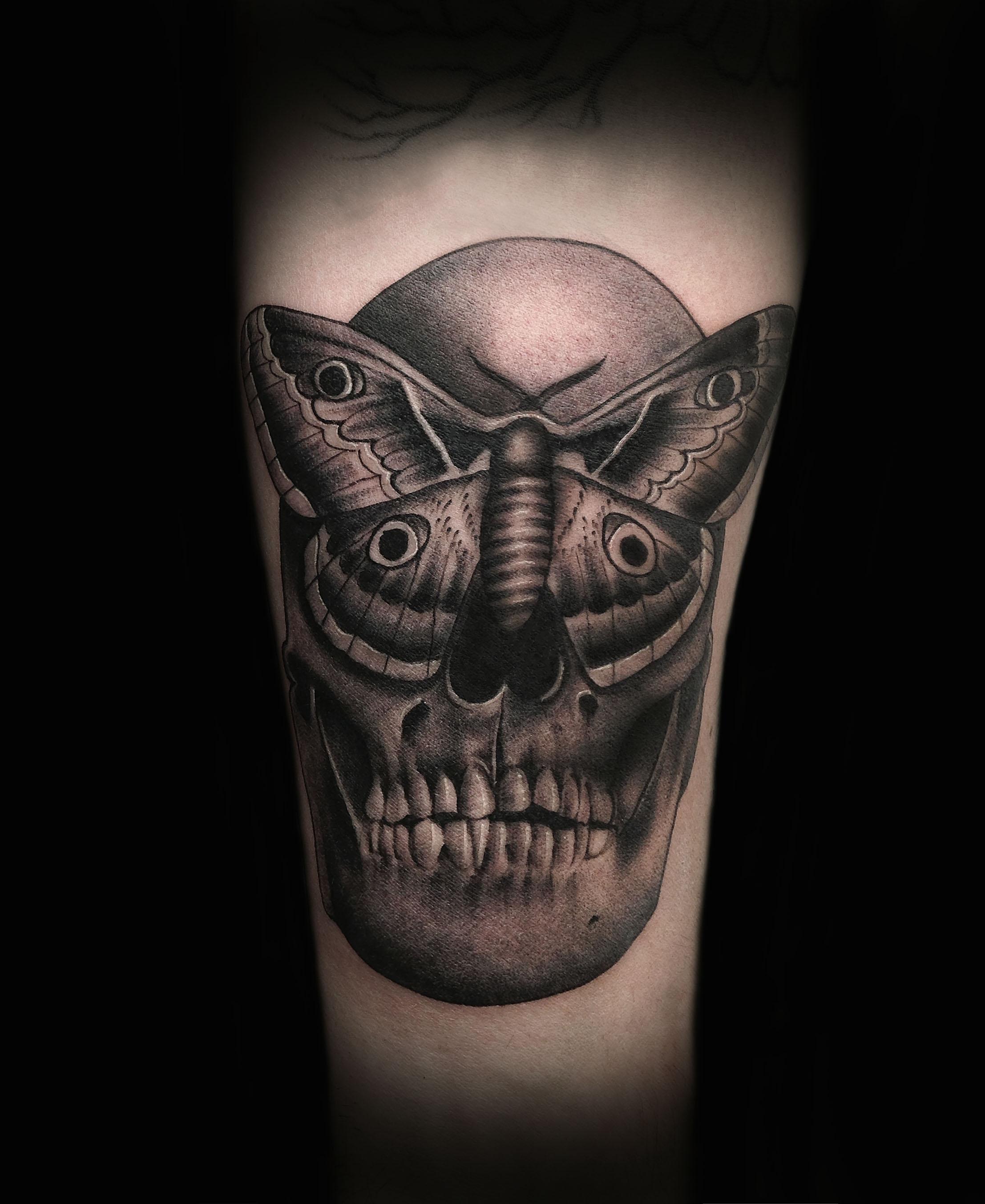 skullmoth1.jpg