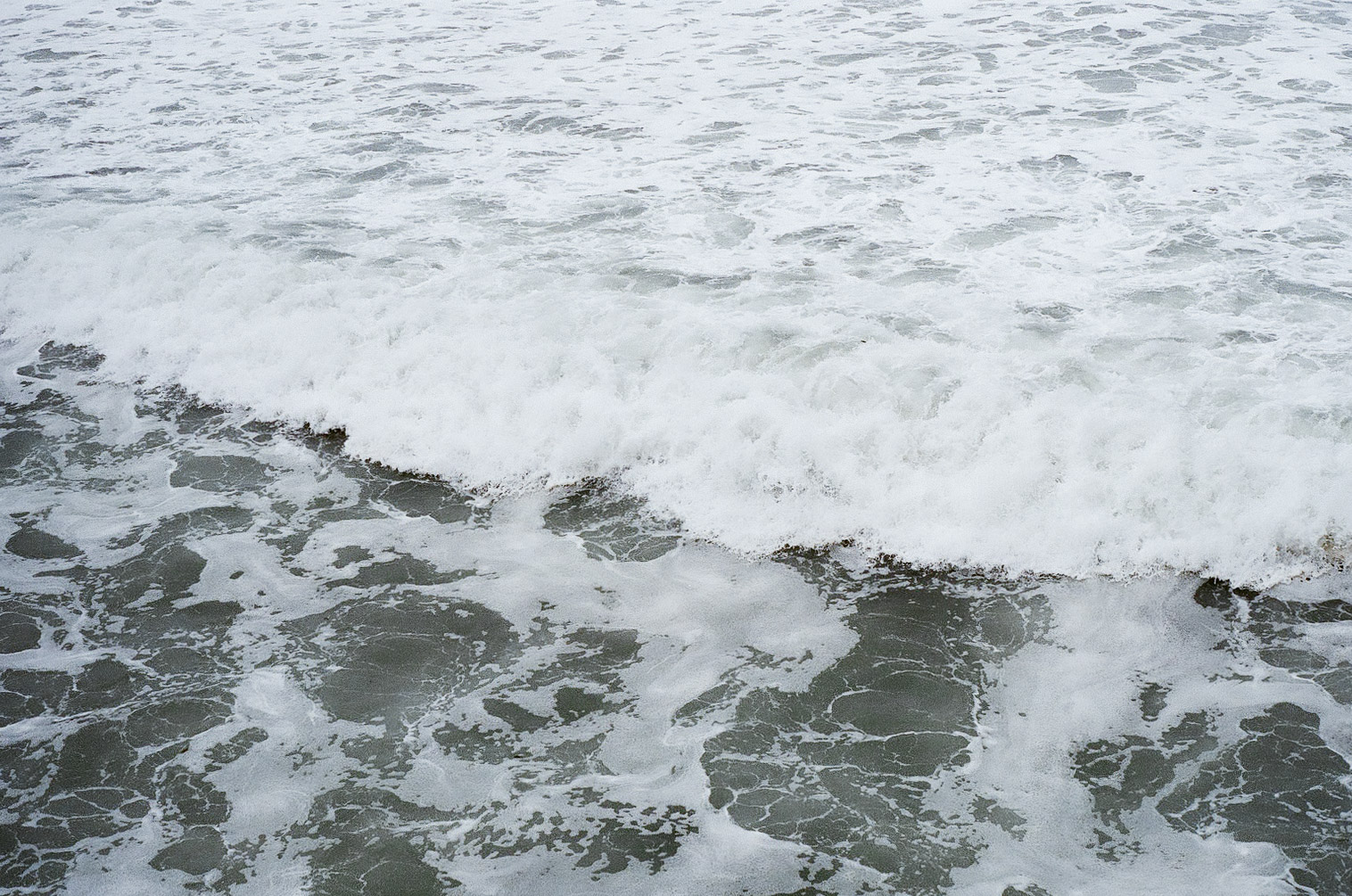 A frothing, churning winter sea awaits us in San Diego; the water is by no means friendly, but it is still rejuvinating.