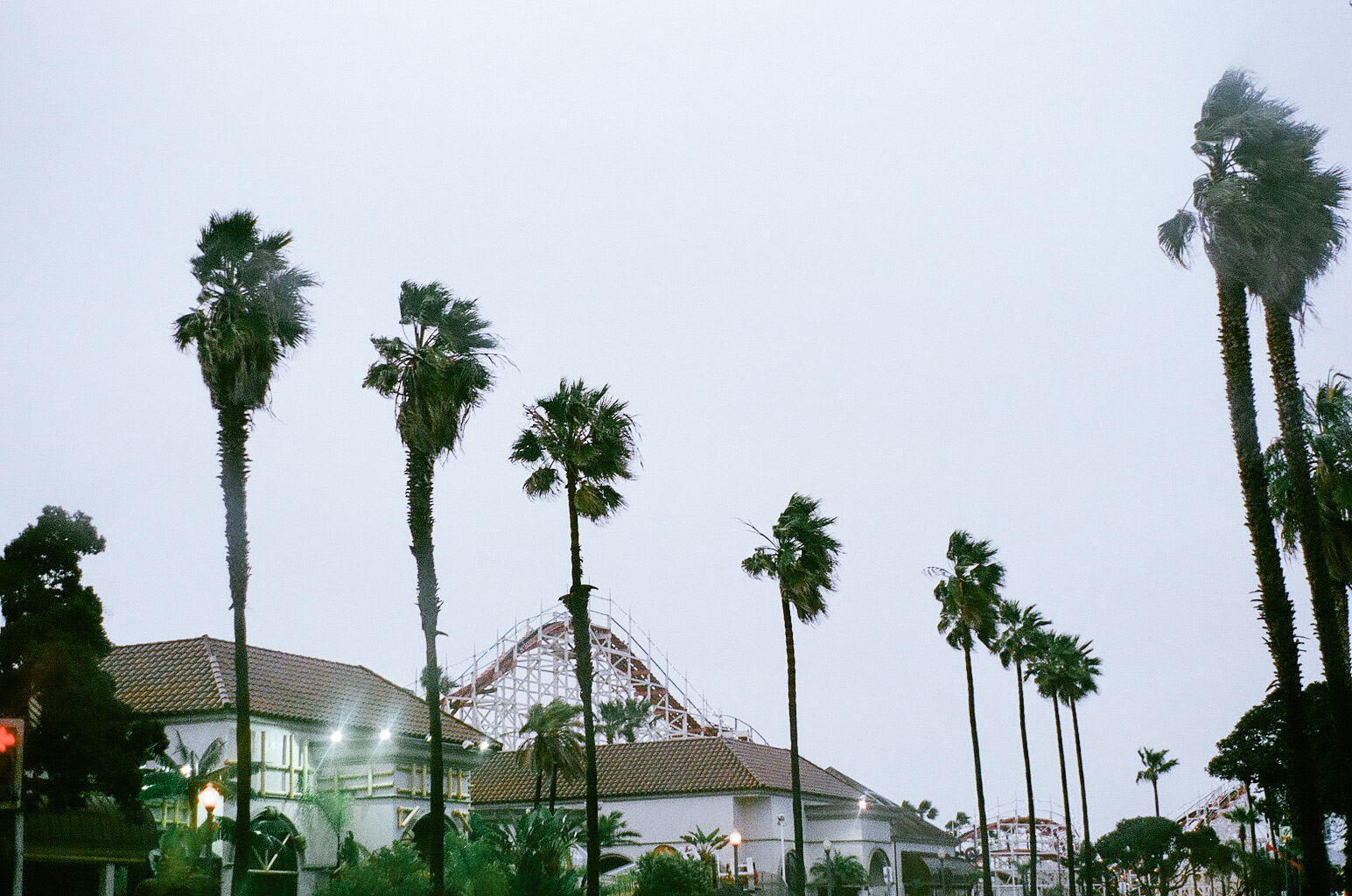 The Mission Beach boardwalk is eerily deserted in a storm; the few of us that dare to venture onto the beach are quickly asked--unless we want to be struck by lightening--to leave by a megaphoned lifeguard.