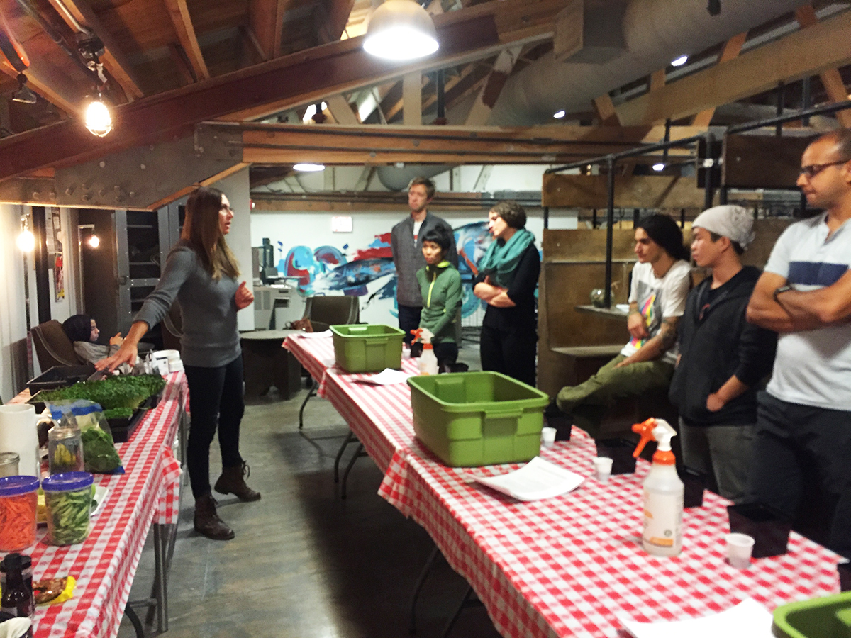 Jen Rosenthal of Planted|Chicago demonstrating how to plant sunflower sprouts.