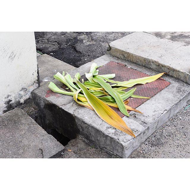 Penang, Feb 2019 . . . . . #penang #penangisland #ifyouleave #oftheafternoon #selektormagazine #justifiedmagazine #yetmagazine #archilovers #paperjournalmag #subjectivelyobjective #paradisexmagazine #hurtlamb #nikon #gominimalmag #minimalzine #thespacesilike #urbanscape