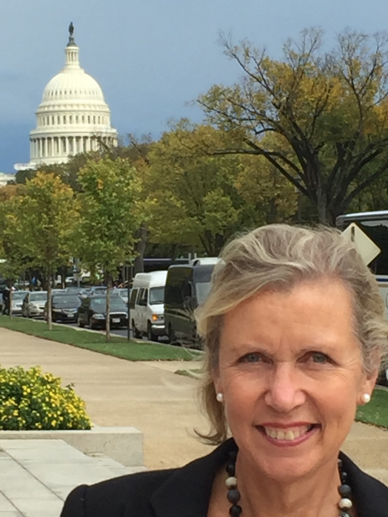 I am an associate of a wide Range of Global Coaching Networks and recently Joined my colleagues at a conference in Washington.  I love to travel and On this occasion i took advantage of a wonderful day's sightseeing while I was there.!