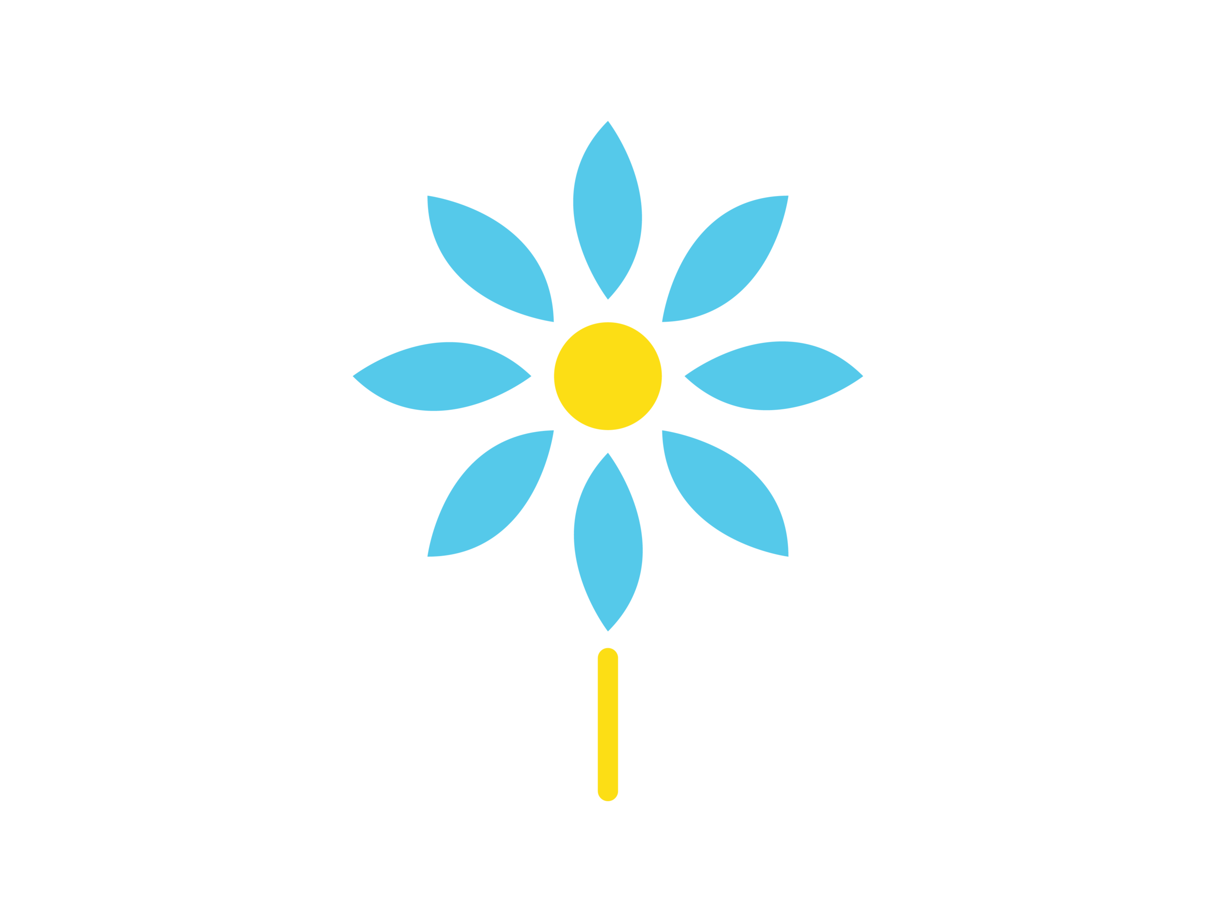 blossom-plan
