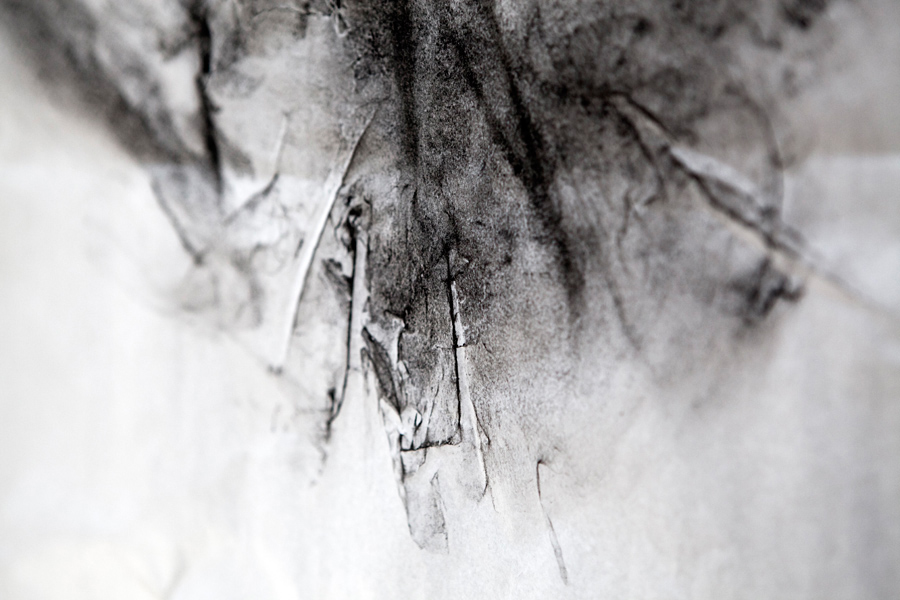 Laurent Delaire-8267-web-Delphine-Perrin.jpg