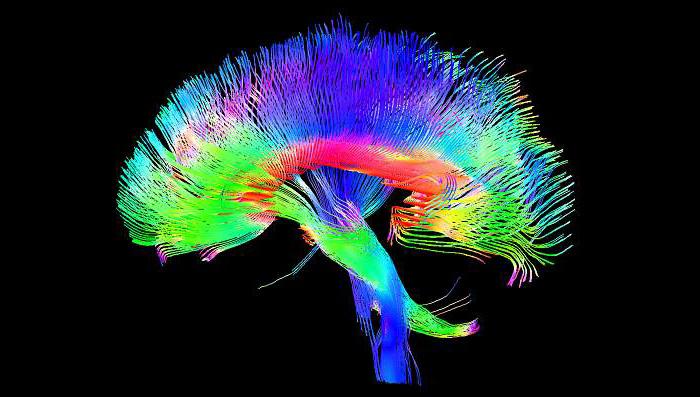 MRIs (3d)