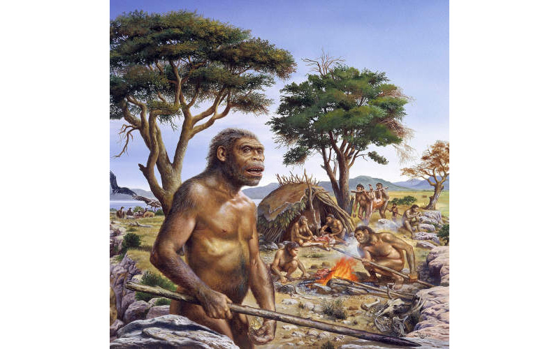Early Humans Hunting