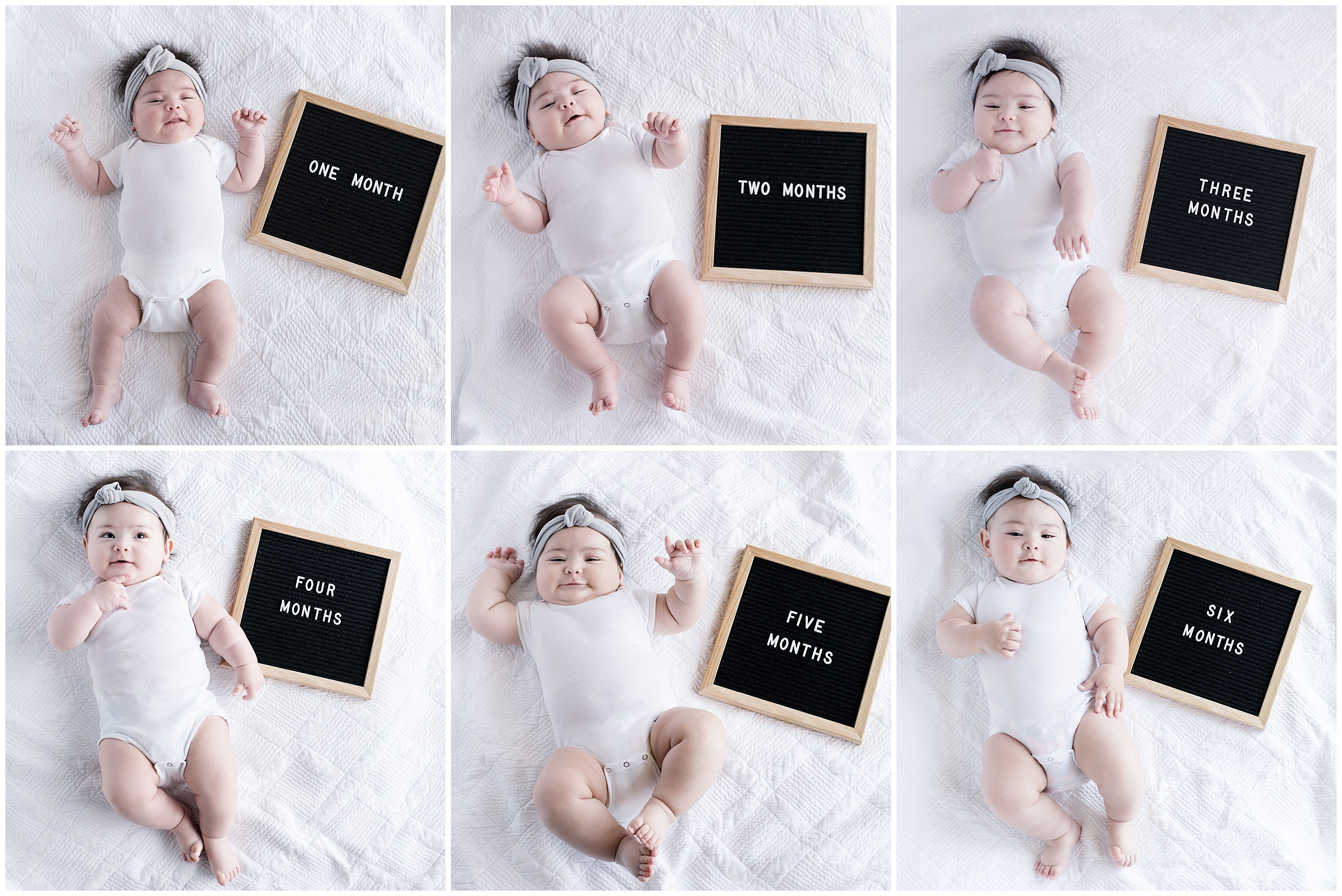 Month by month baby photos