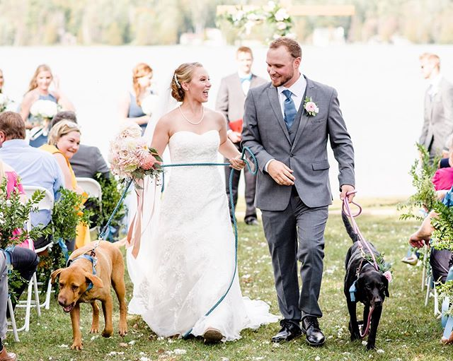 I didn't know what to expect with Emily and Chance's dogs being key members of their wedding party, all I know is that now I am dying over how adorable this recessional is! 🥺 I got home from Michigan last night and finally got the chance to sit down and edit some of my favorites from their wedding. I'm excited to show you more from their big day on their blog post coming this week!⠀ ⠀ ⠀ @emily.hayes02 #hayesfever #hayesdandconfused #dogsatweddings #weddingdogs #dogsinweddings #michiganwedding #michiganweddingphotographer #michiganbride #stylemepretty #greenweddingshoes #ruffledblog #weddingsbyraisa