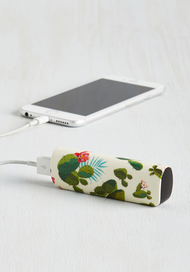 cute cactus charger