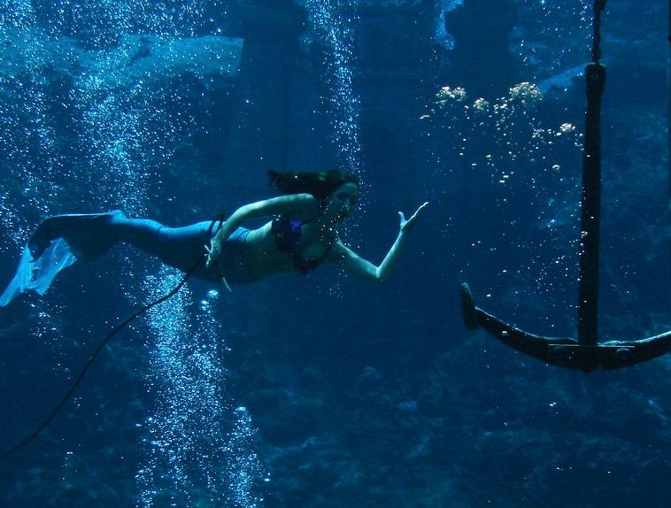 Weeki Wachi Mermaid Show » Weeki Wachi, FL