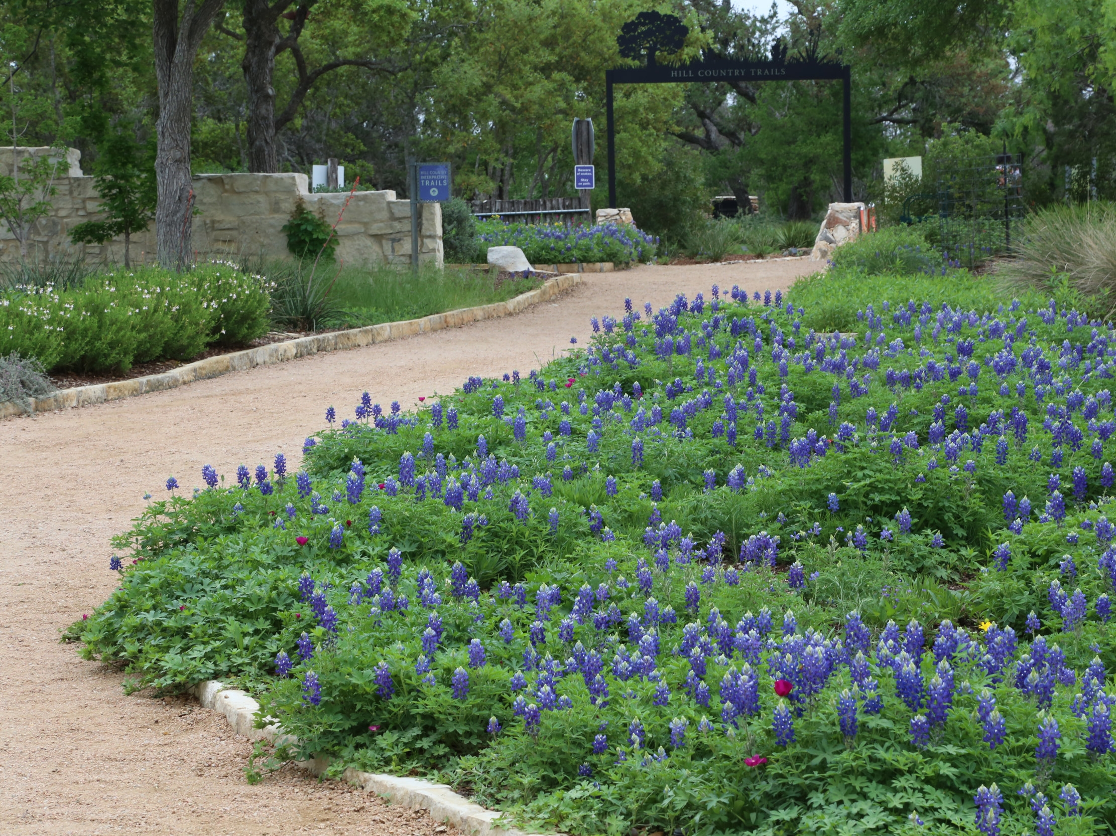 Lady Bird Johnson Wildflower Center » Austin, TX