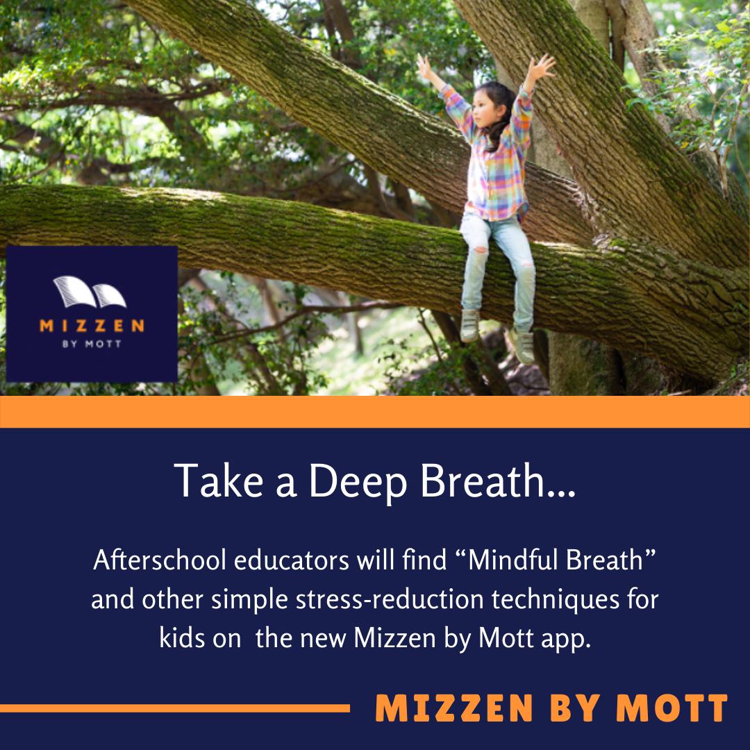 Mizzen Mindful.png