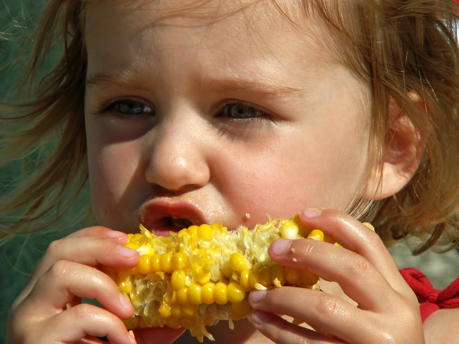 bigstock-girl-eating-corn-on-the-cob-766316