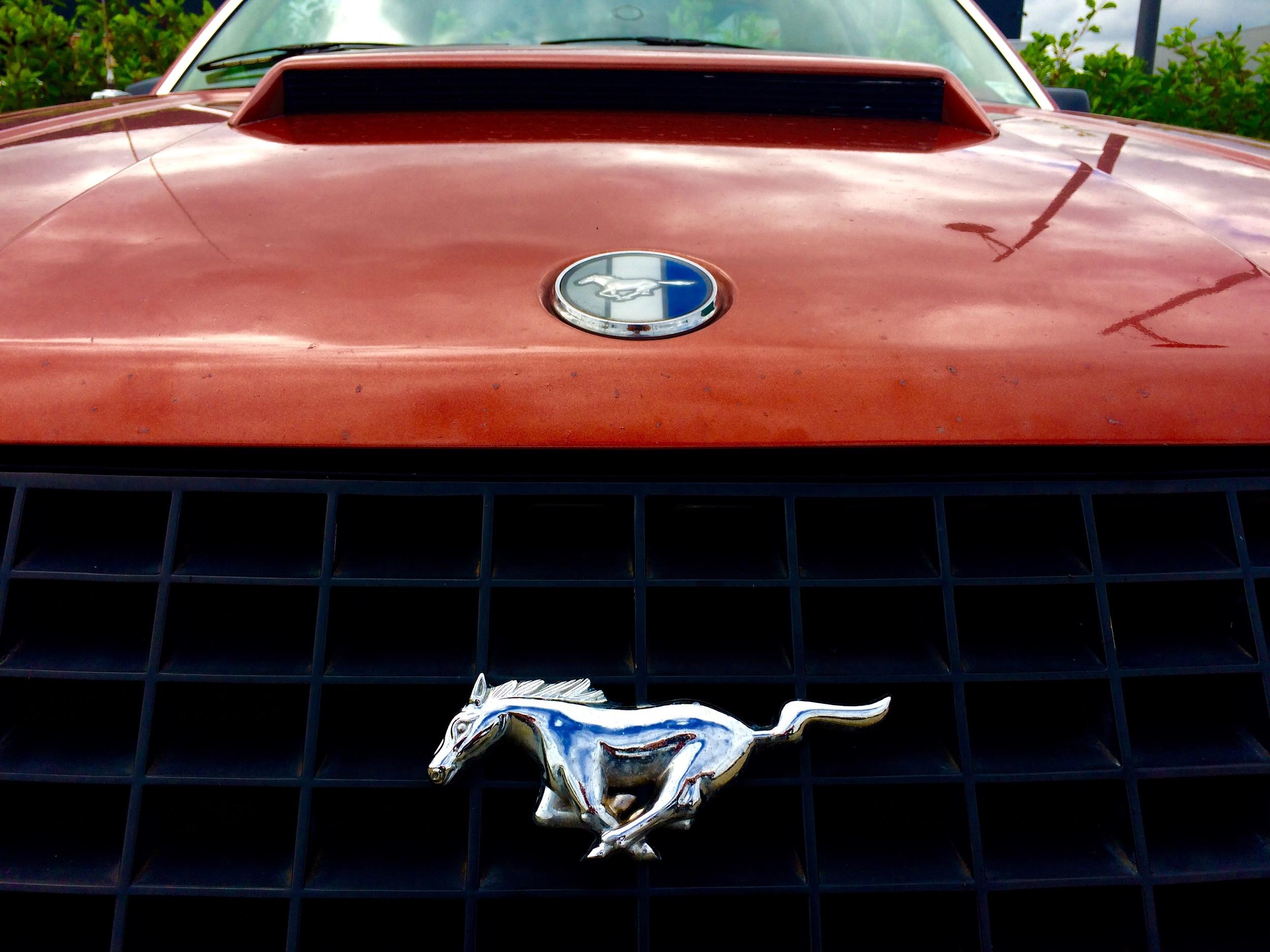 Viewfinder - motorblok - Mustang
