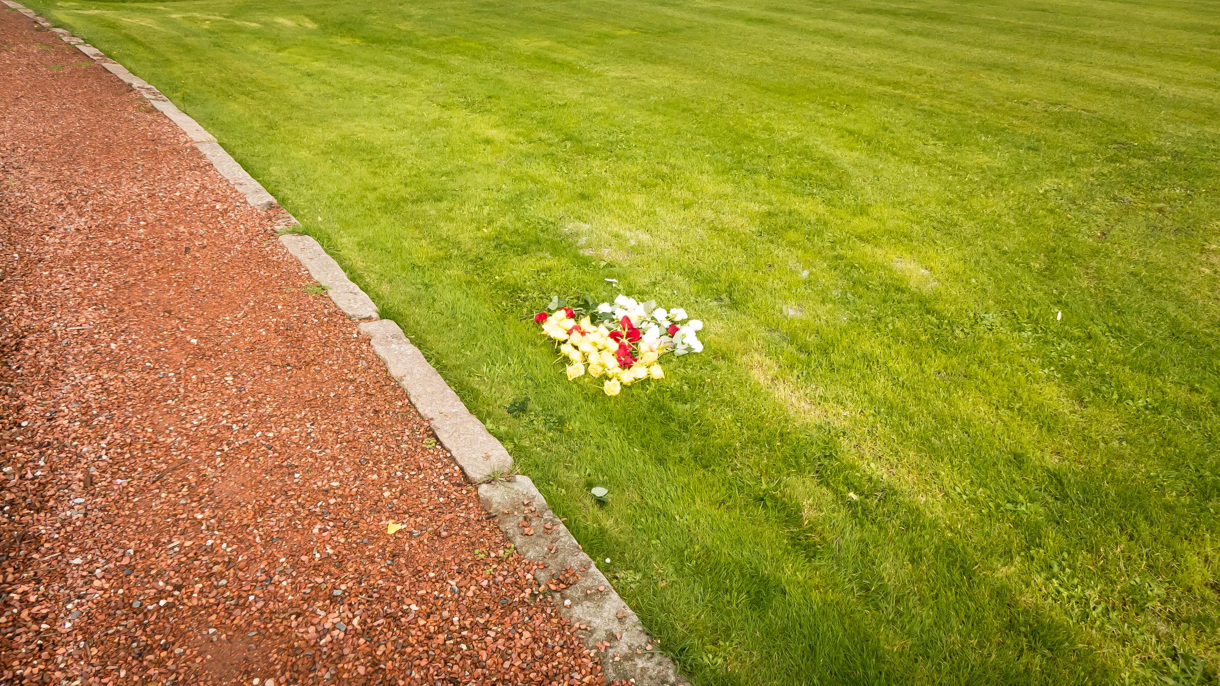 Wat maakt het kerkhof van Boom mooi - kleuren en lijnen