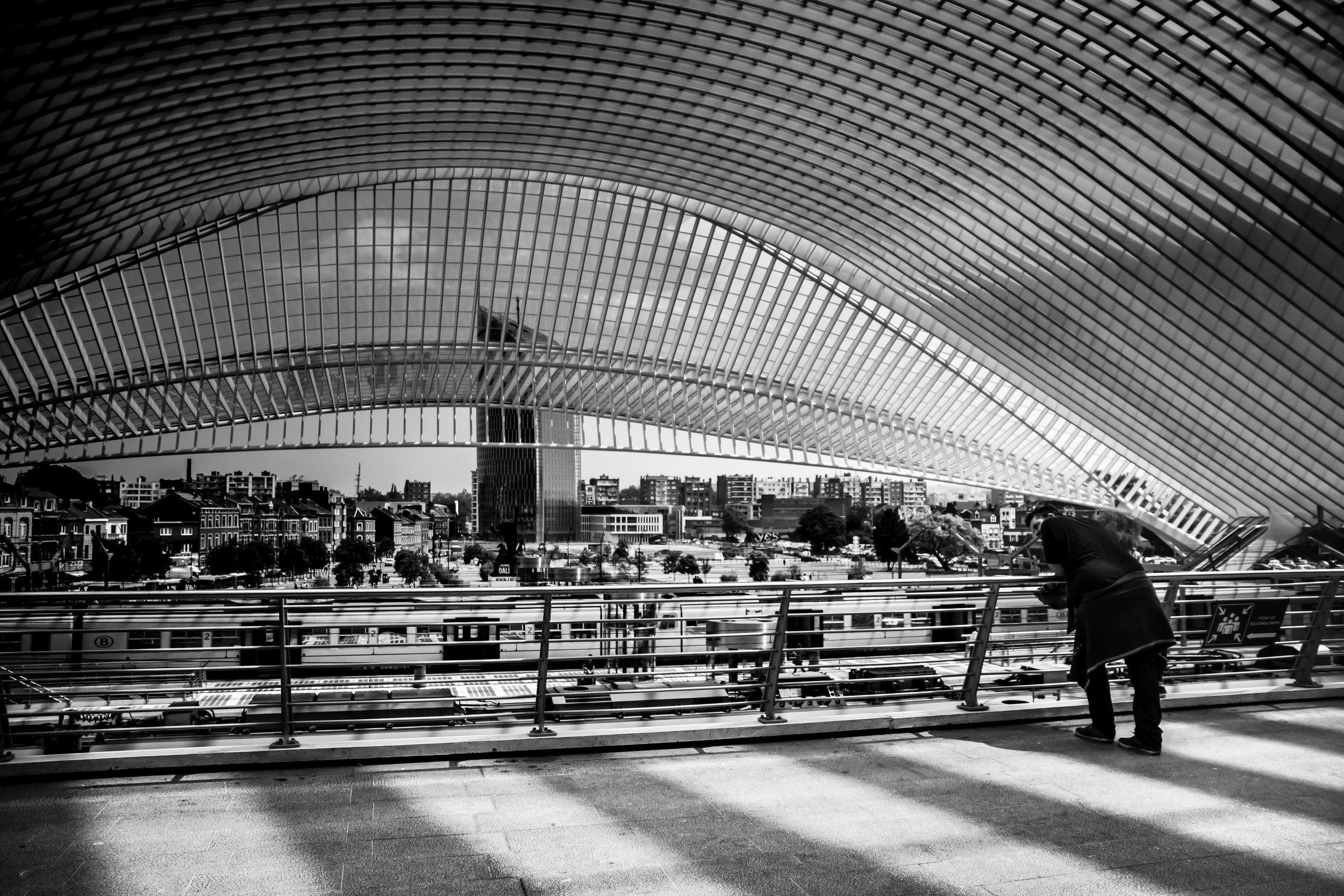 Viewfinder--straatfotografie-station-gare-guillemins-luik-mensen-17