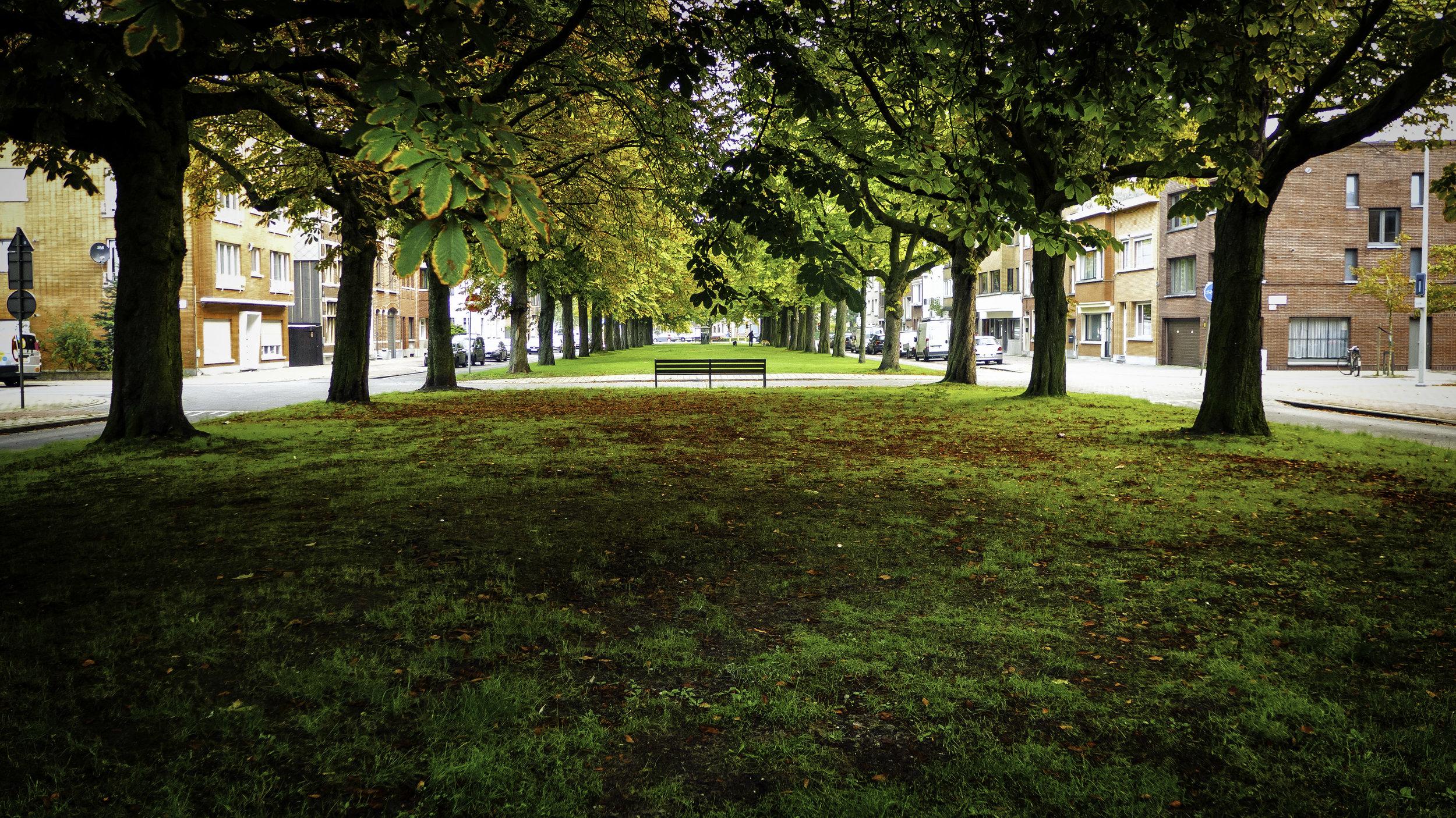 viewfinder-zomaar-zondag-start-herfst-fotografie-kleuren