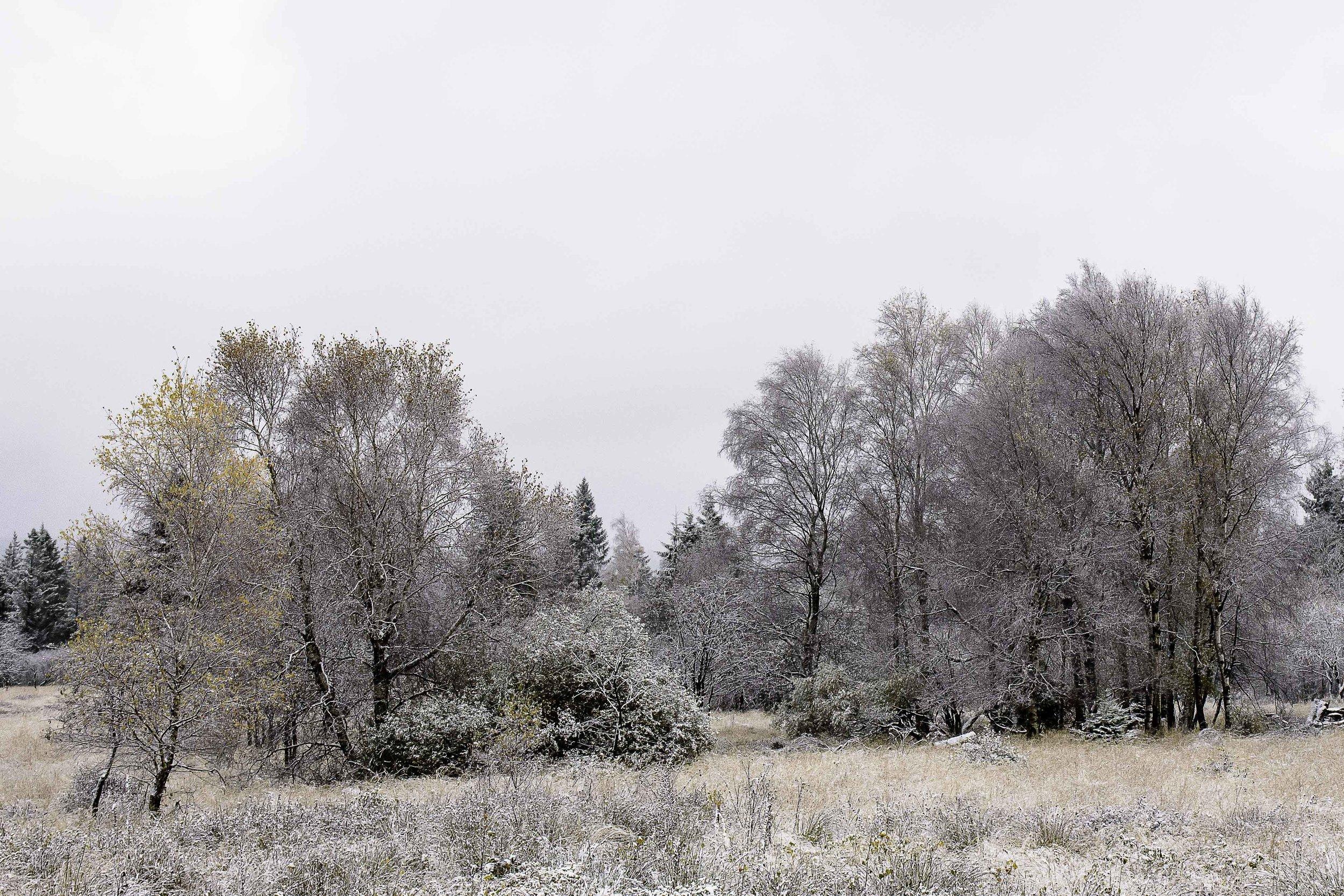 viewfinder-sneeuwlandschap-fotograferen-juiste-belichting