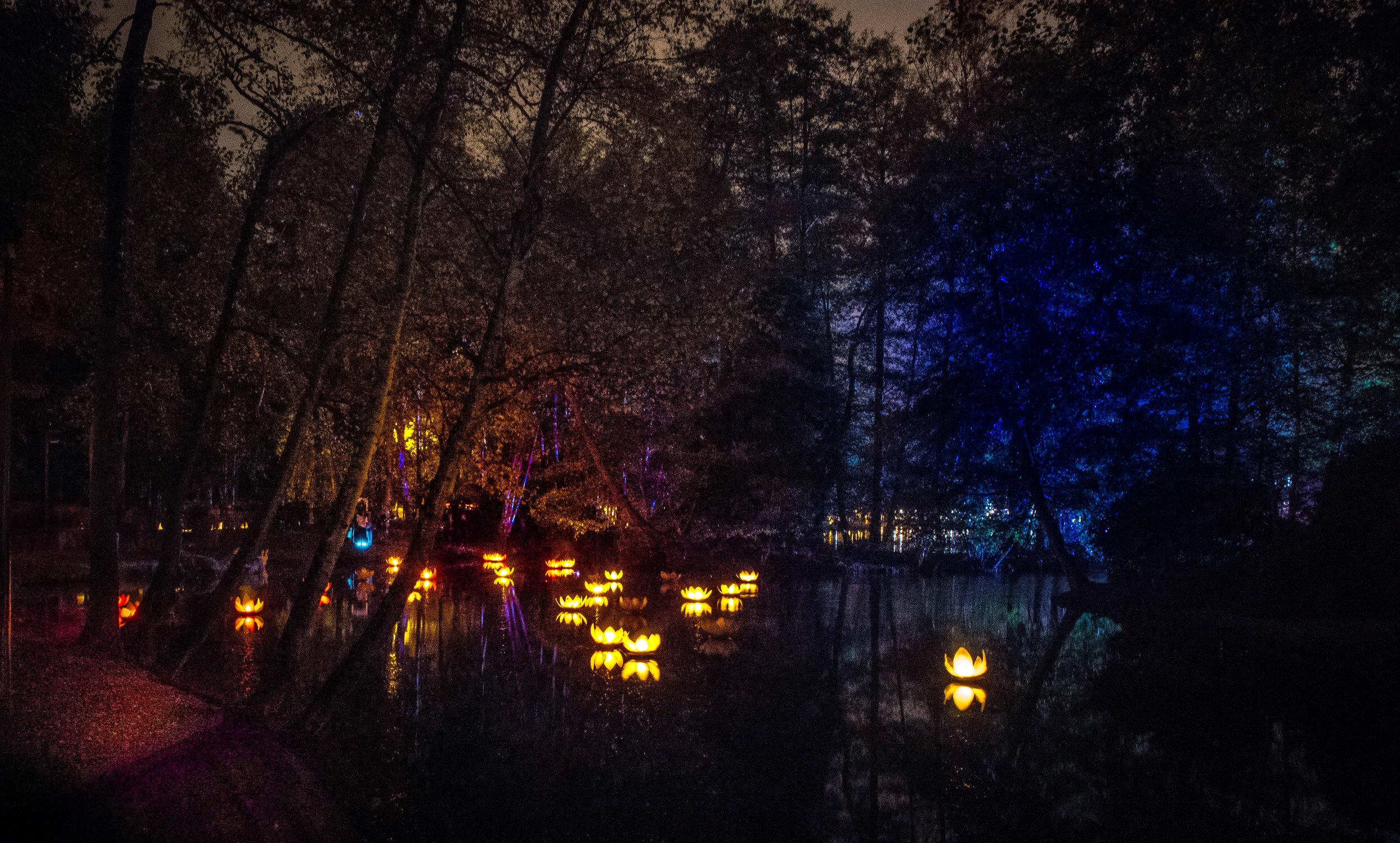 viewfinder-licht-fotograferen-nacht-avond-vurige-vijvers-4