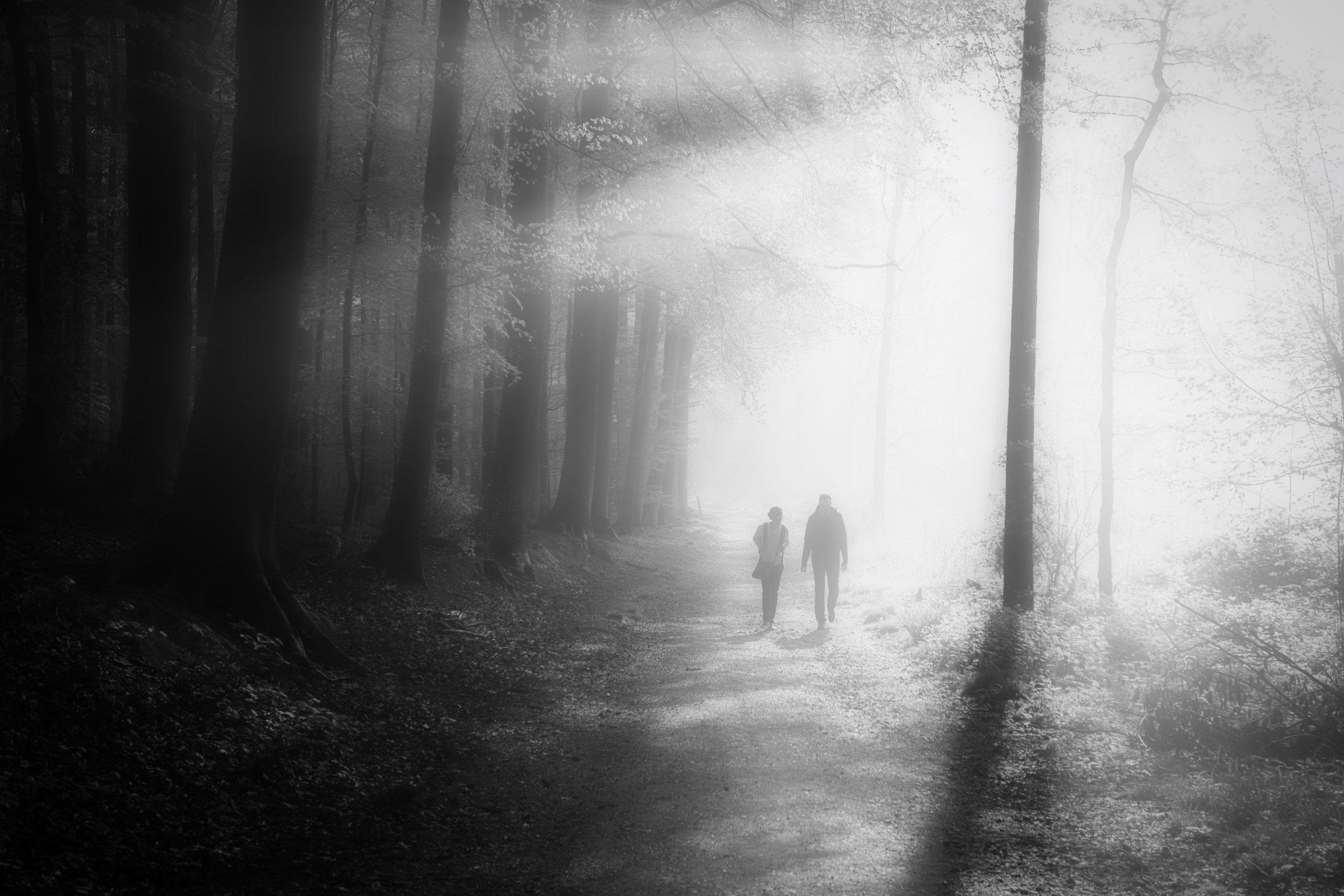 Vertrek in de mist