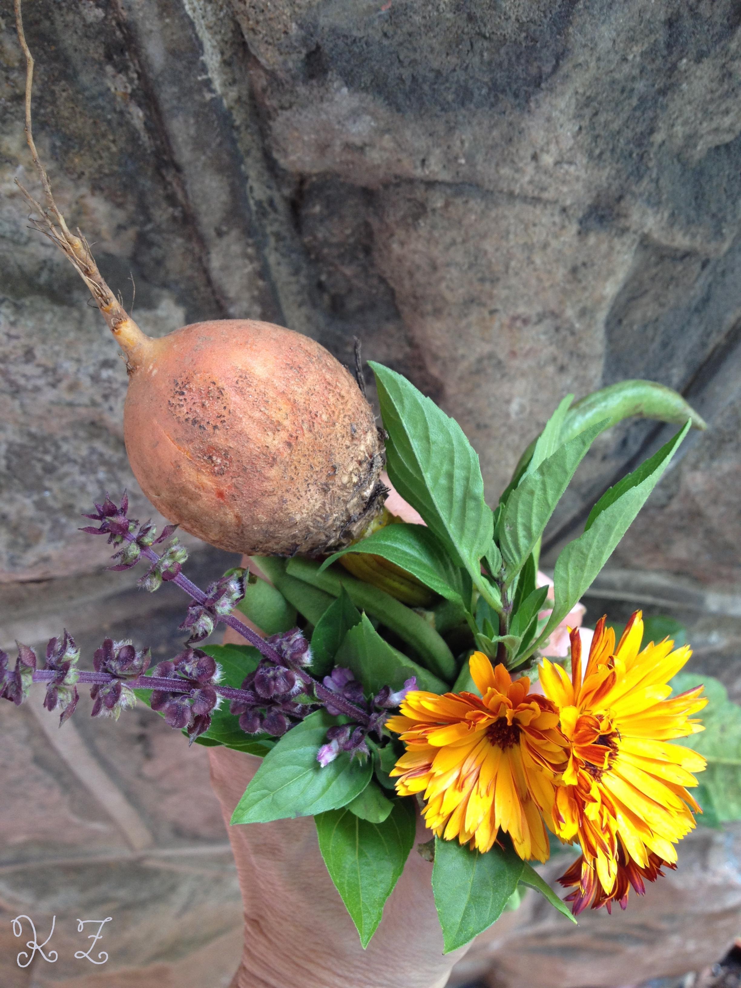 Golden beet, Thai basil & Calendula