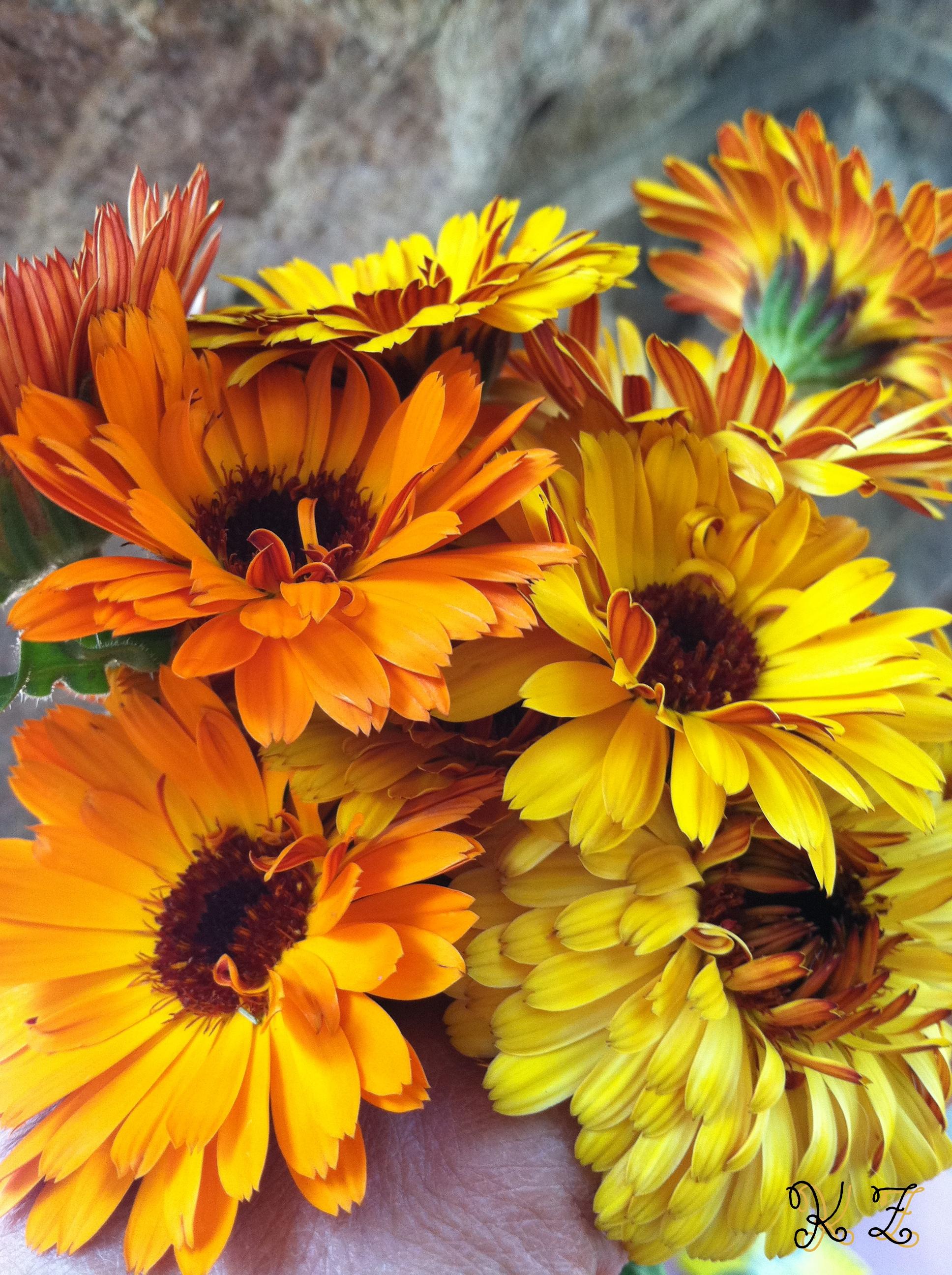 cal bouquet.jpg