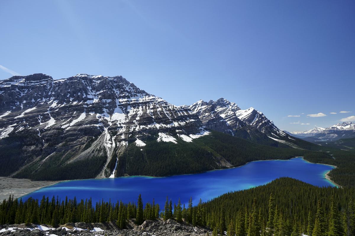 the national parks girl_banff national park_canada_alberta_sonya6000_peyto lake.JPG