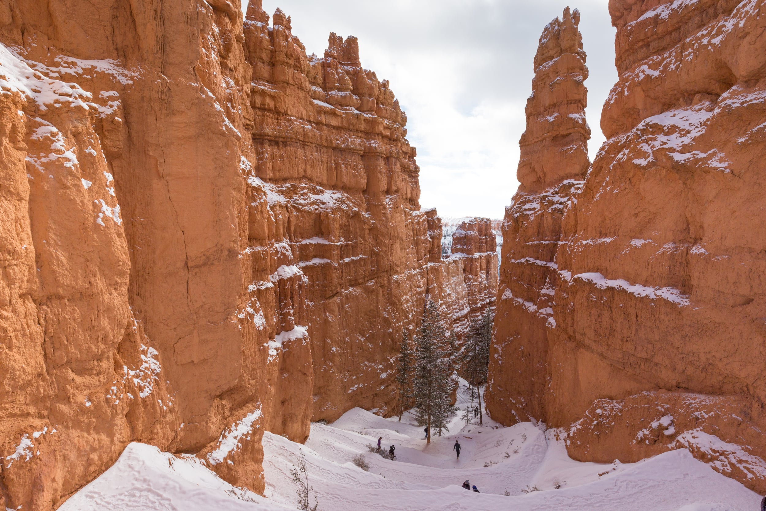 Switchbacks on the Navajo Trail