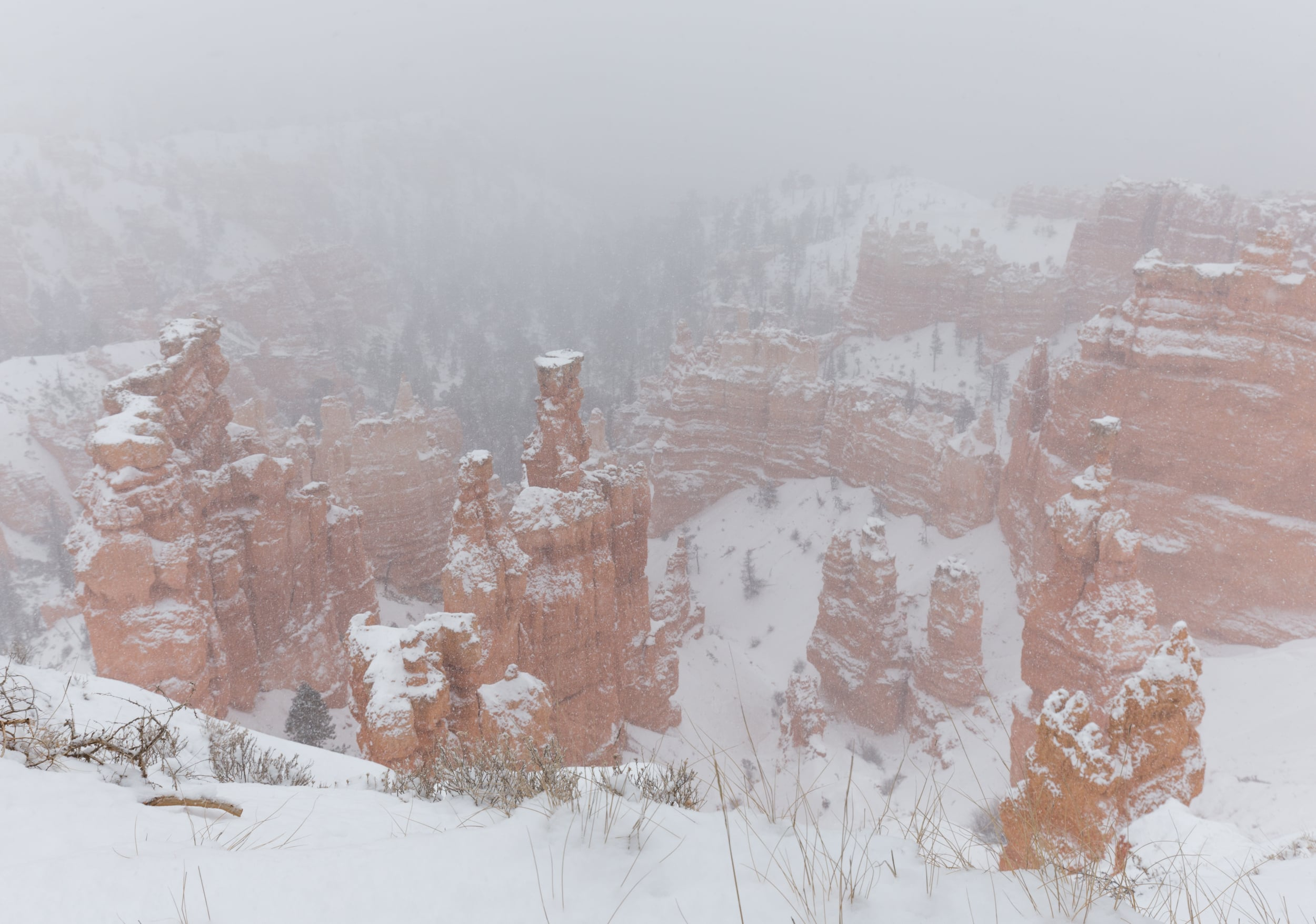 Snowy views from Sunset Point