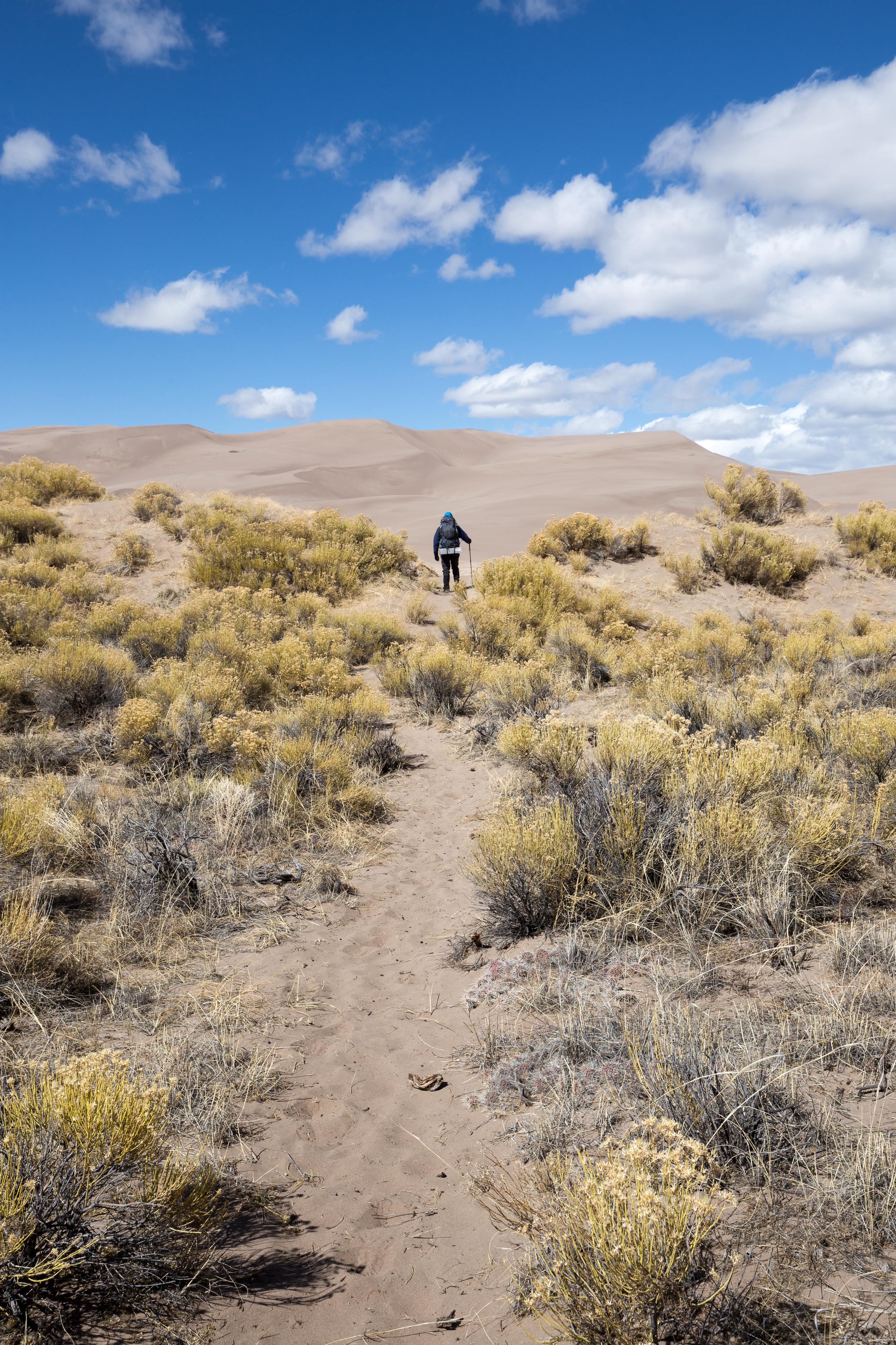 the national parks girl_great sand dunes national park_great sand dunes_hiking_backcountry hike_canon6d.JPG