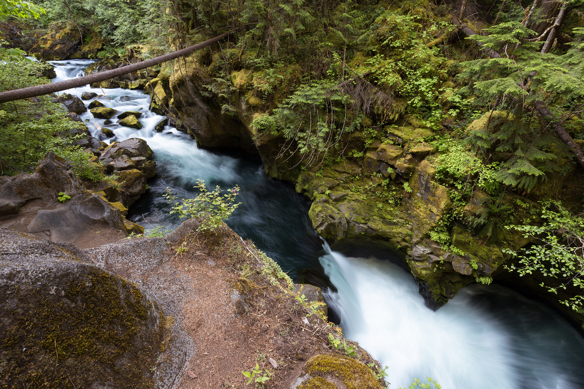 the national parks girl_oregon_waterfall_forest_long exposure_Toketee Falls_Umpqua Forest.JPG