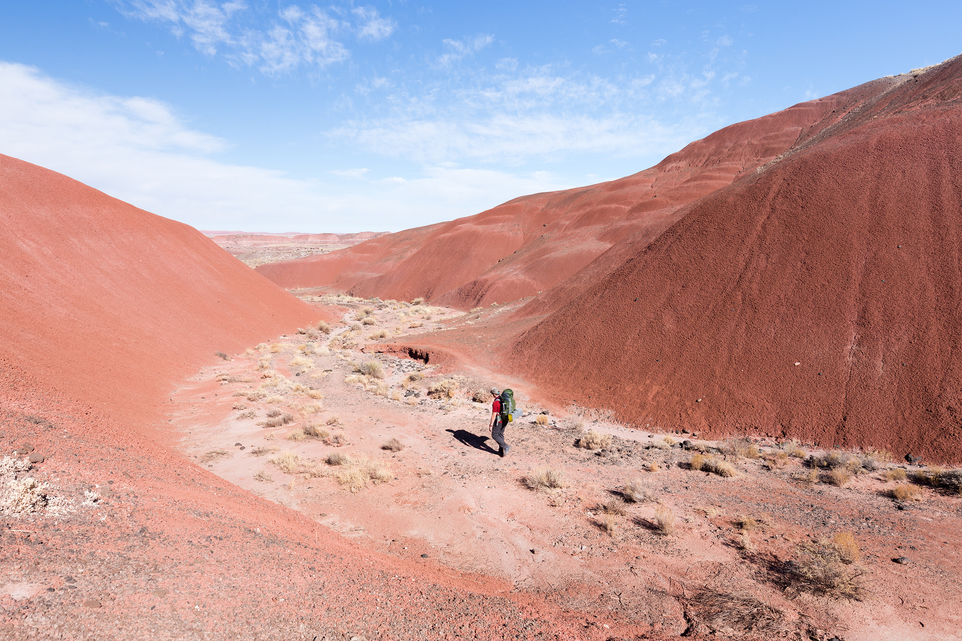 Petrified Forest National Park new-4.jpg