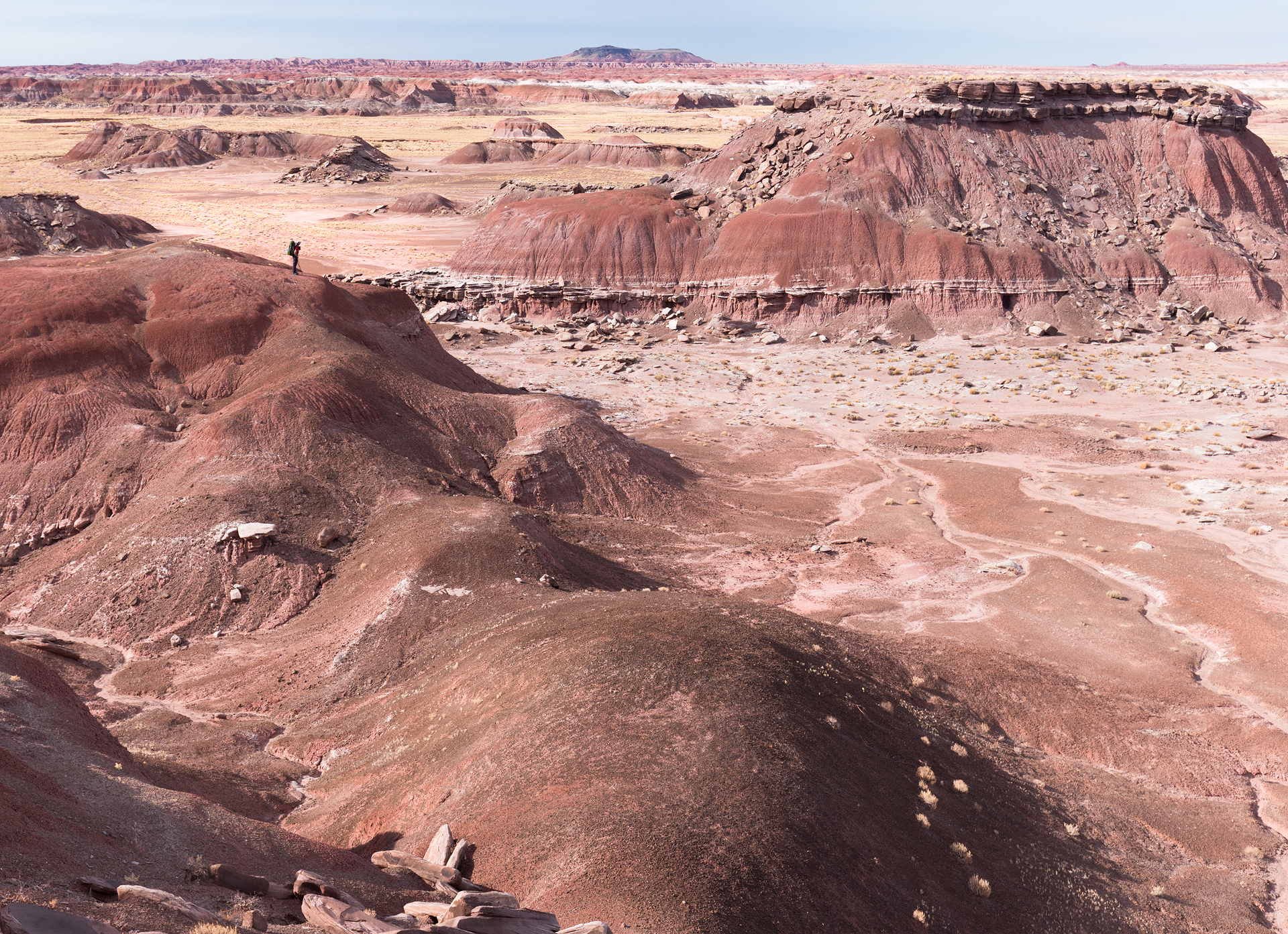 Petrified Forest National Park-24.jpg