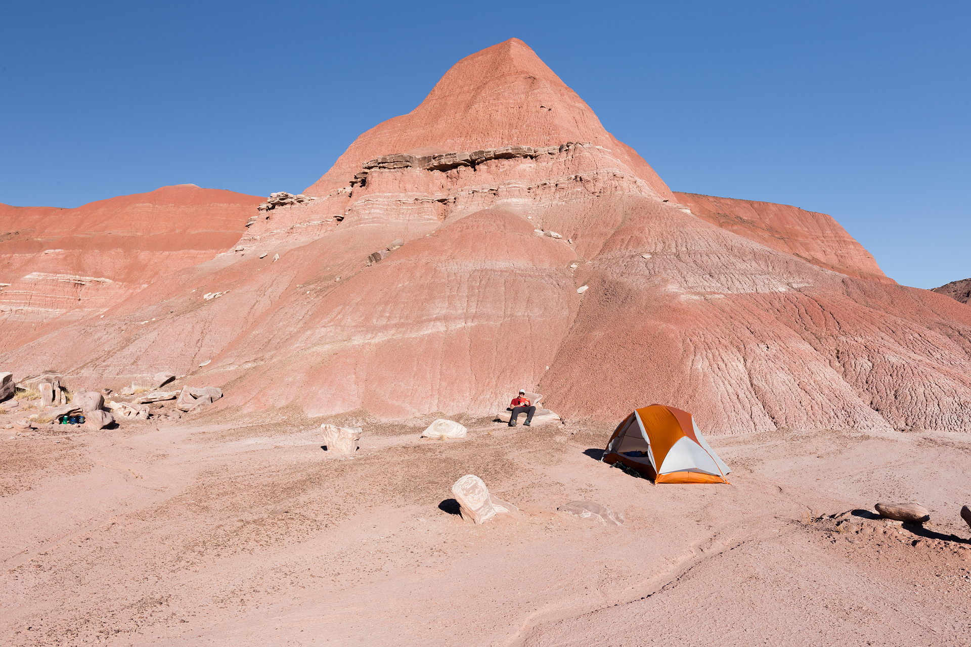 Petrified Forest National Park new-3.jpg