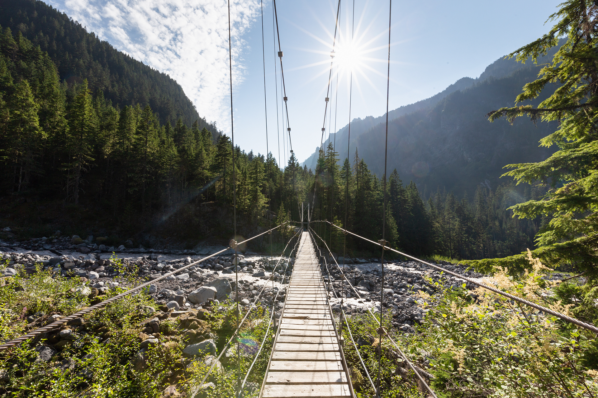 The Carbon River Suspension Bridge