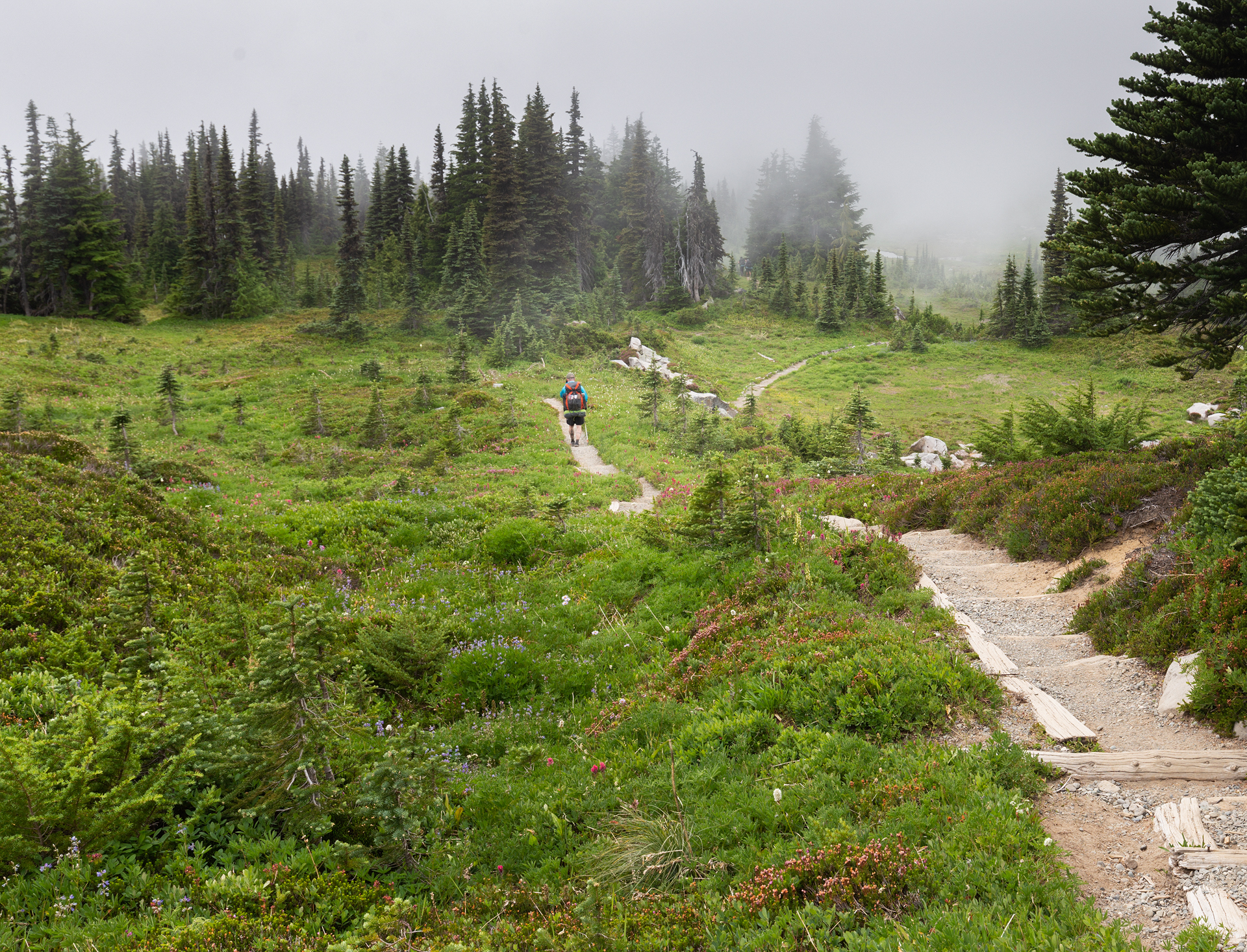 Wonderland Trail Mt Rainier-19.jpg