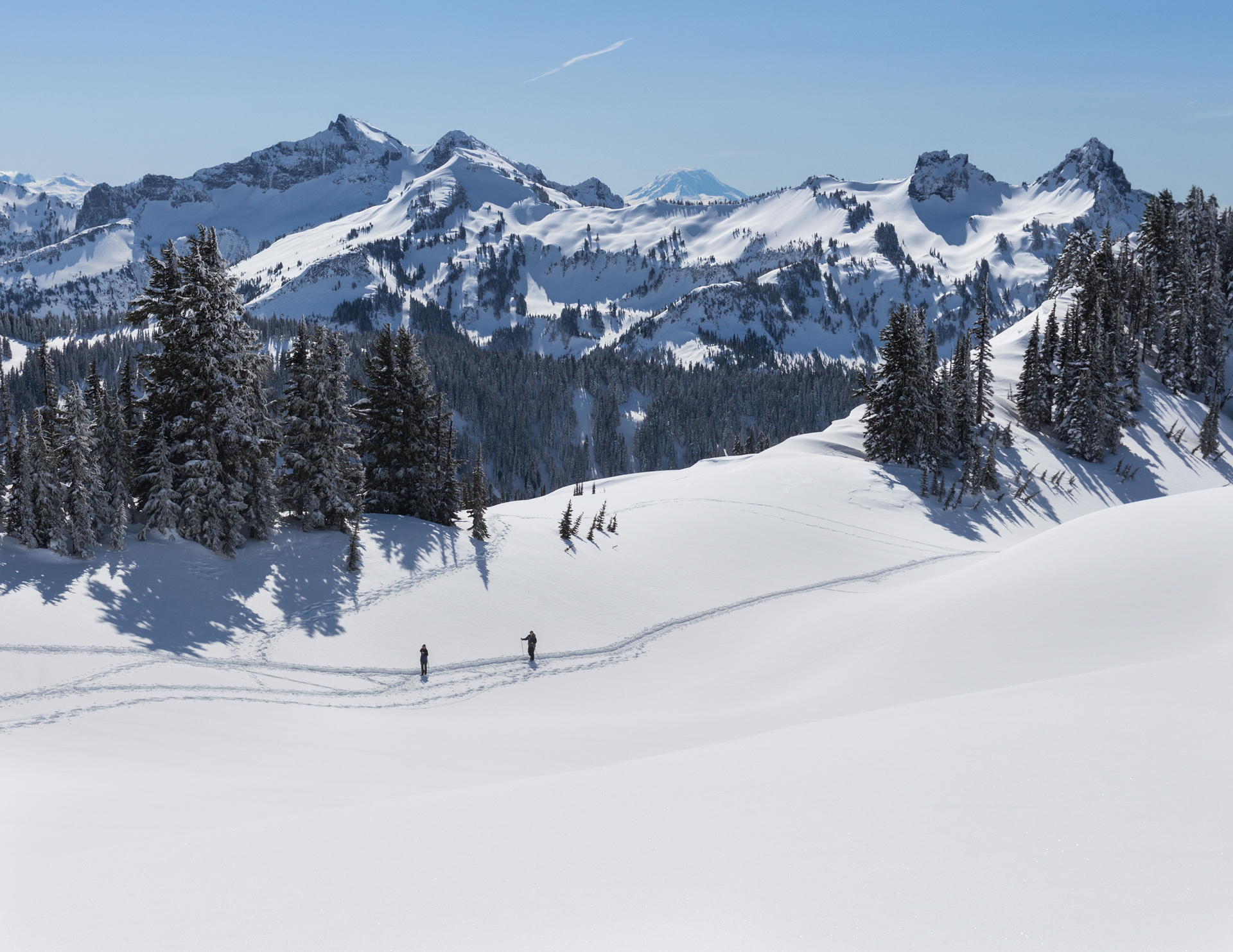 Snowshoeing/skiing in the Paradise area of Mt. Rainier National Park