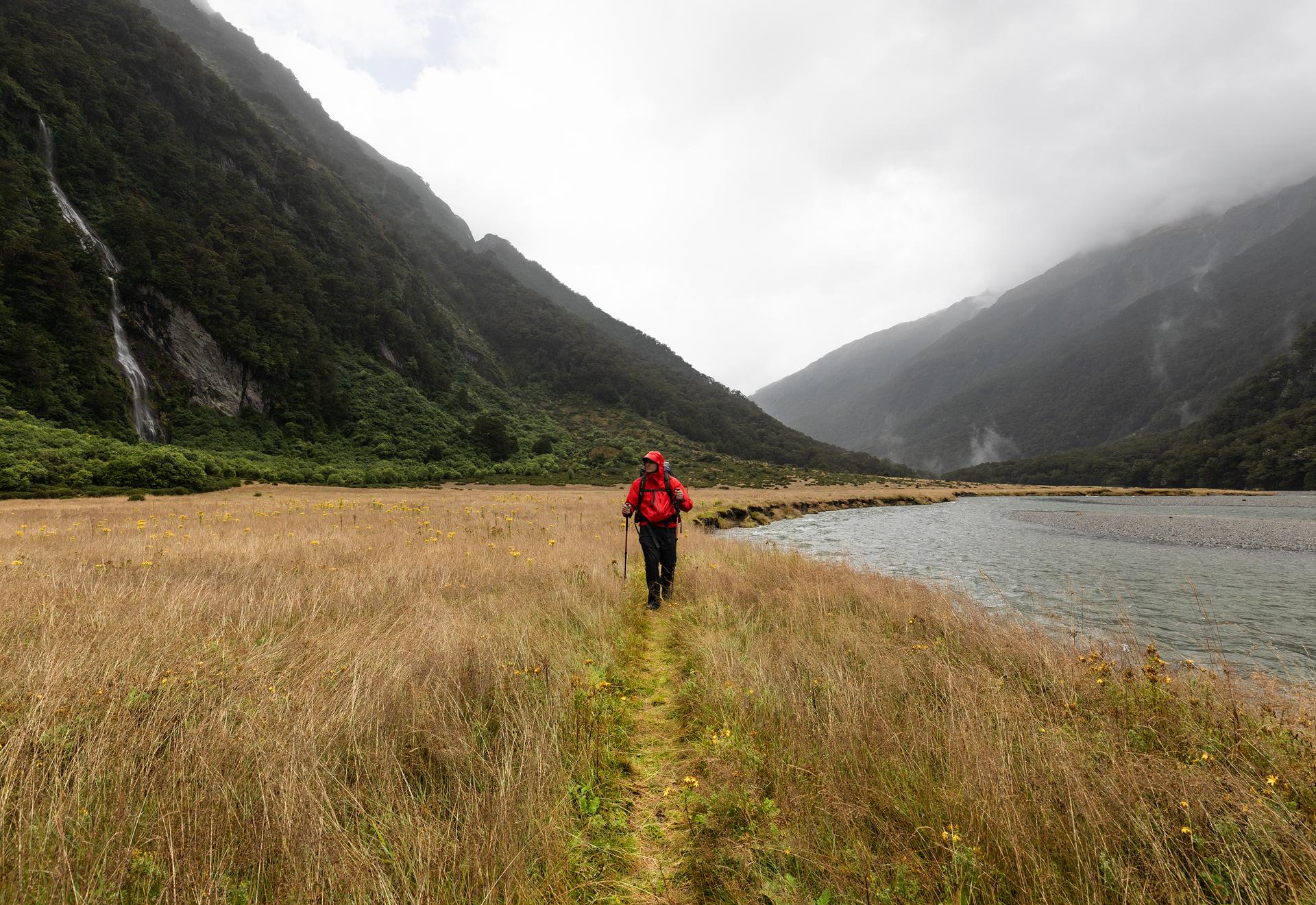 Gillespie Track New Zealand-4.jpg