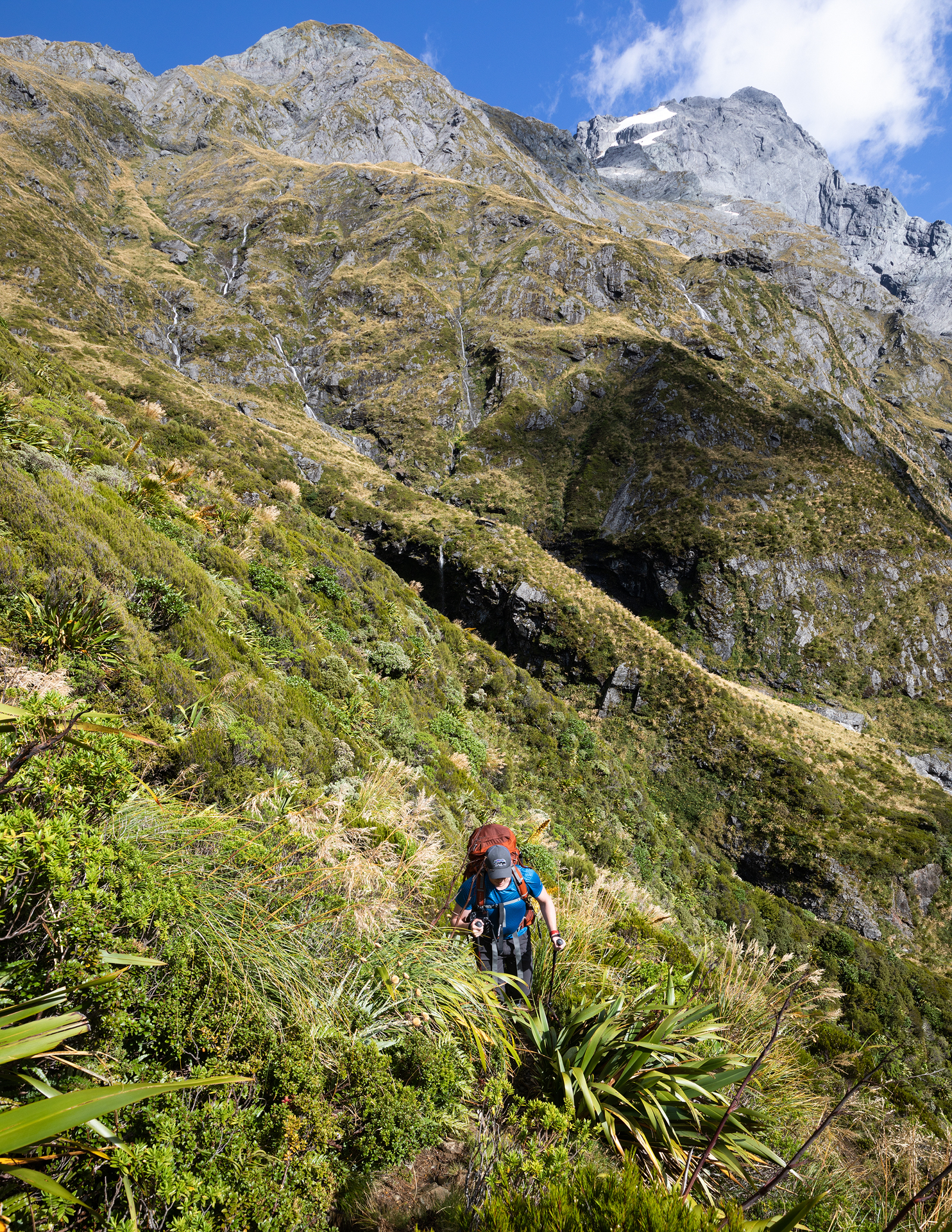 Heading up the steep trail toward Gillespie Pass