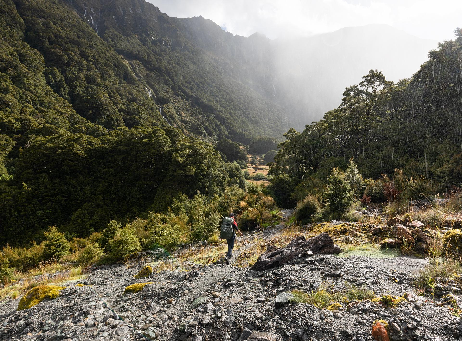 Gillespie Track New Zealand-7.jpg