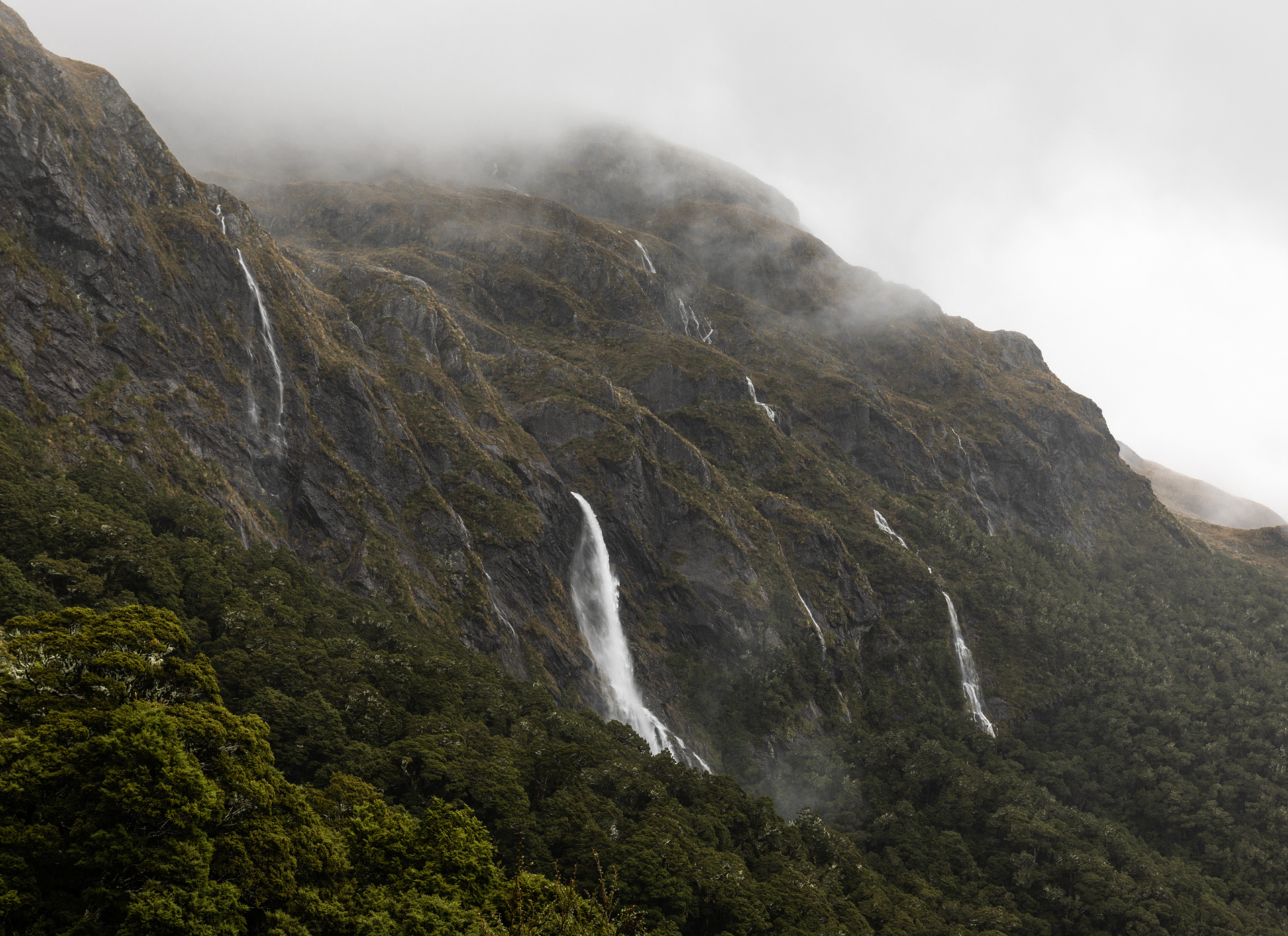 Rain on the Routeburn Track — The National Parks Girl