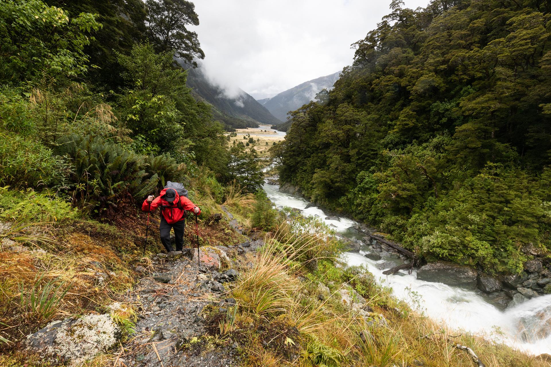 Gillespie Track New Zealand-1.jpg