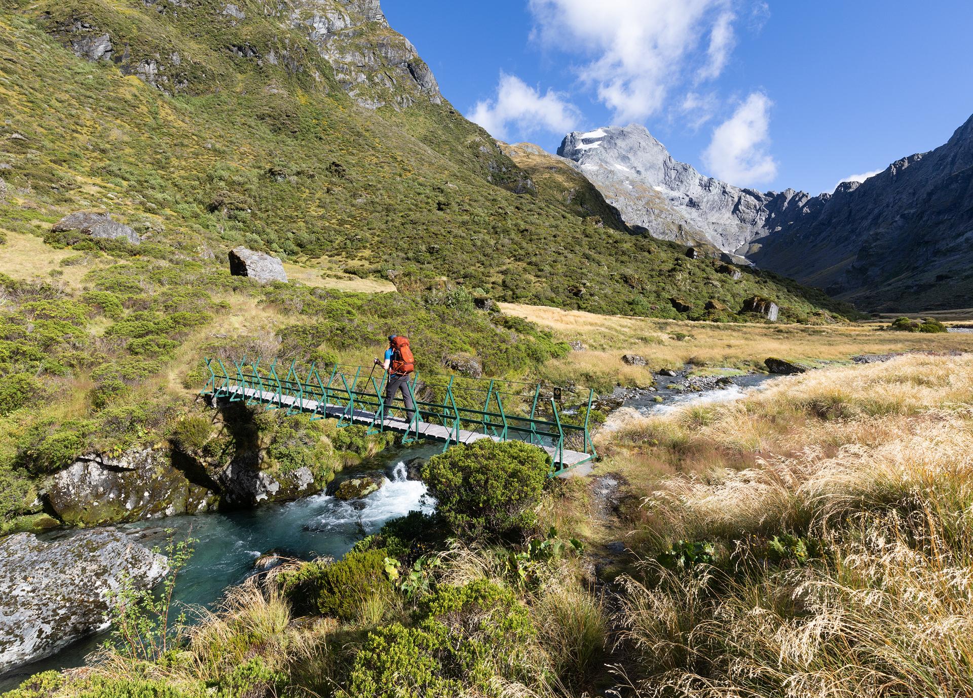 Gillespie Track New Zealand-10.jpg