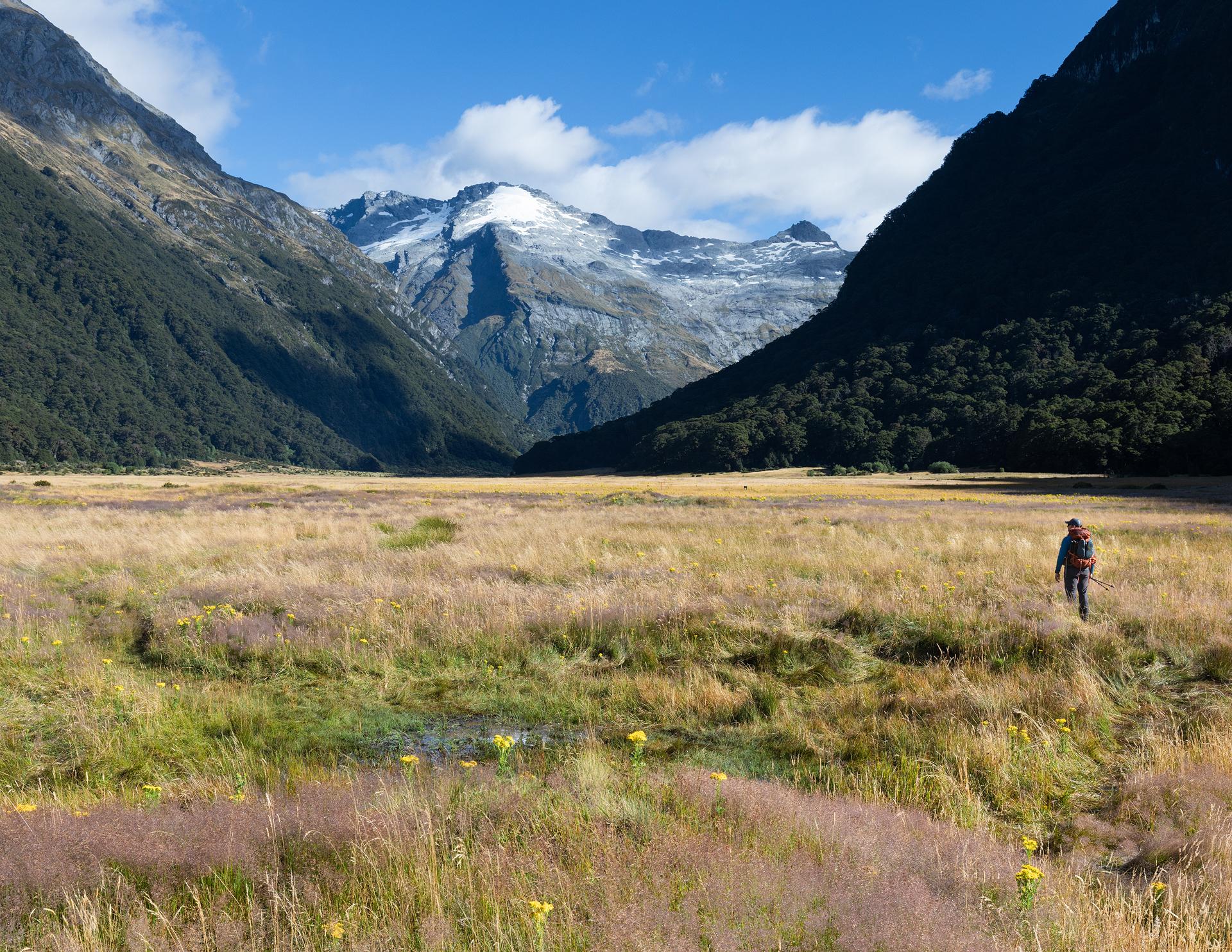 Gillespie Track New Zealand-26.jpg