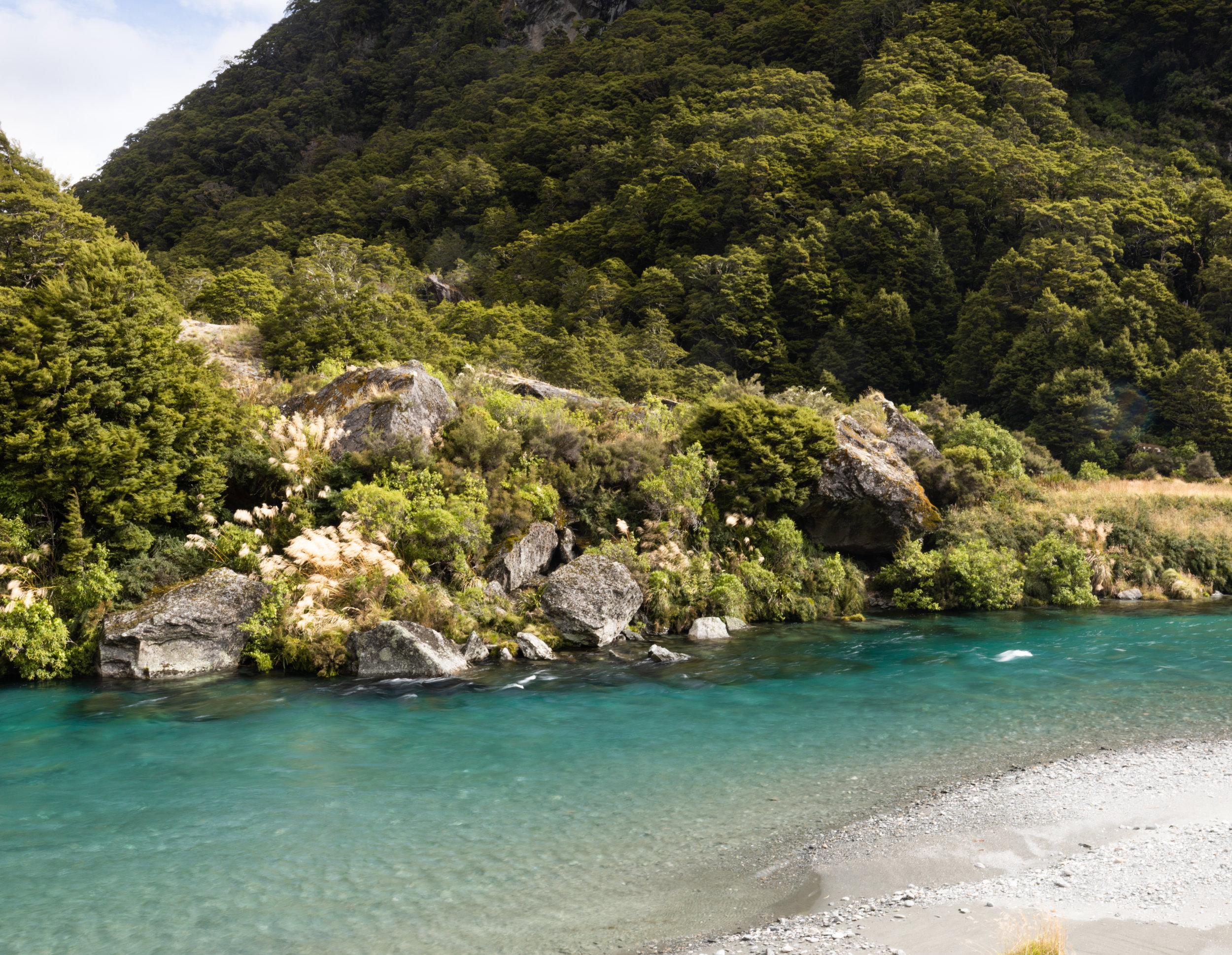 Gillespie Track New Zealand-38.jpg